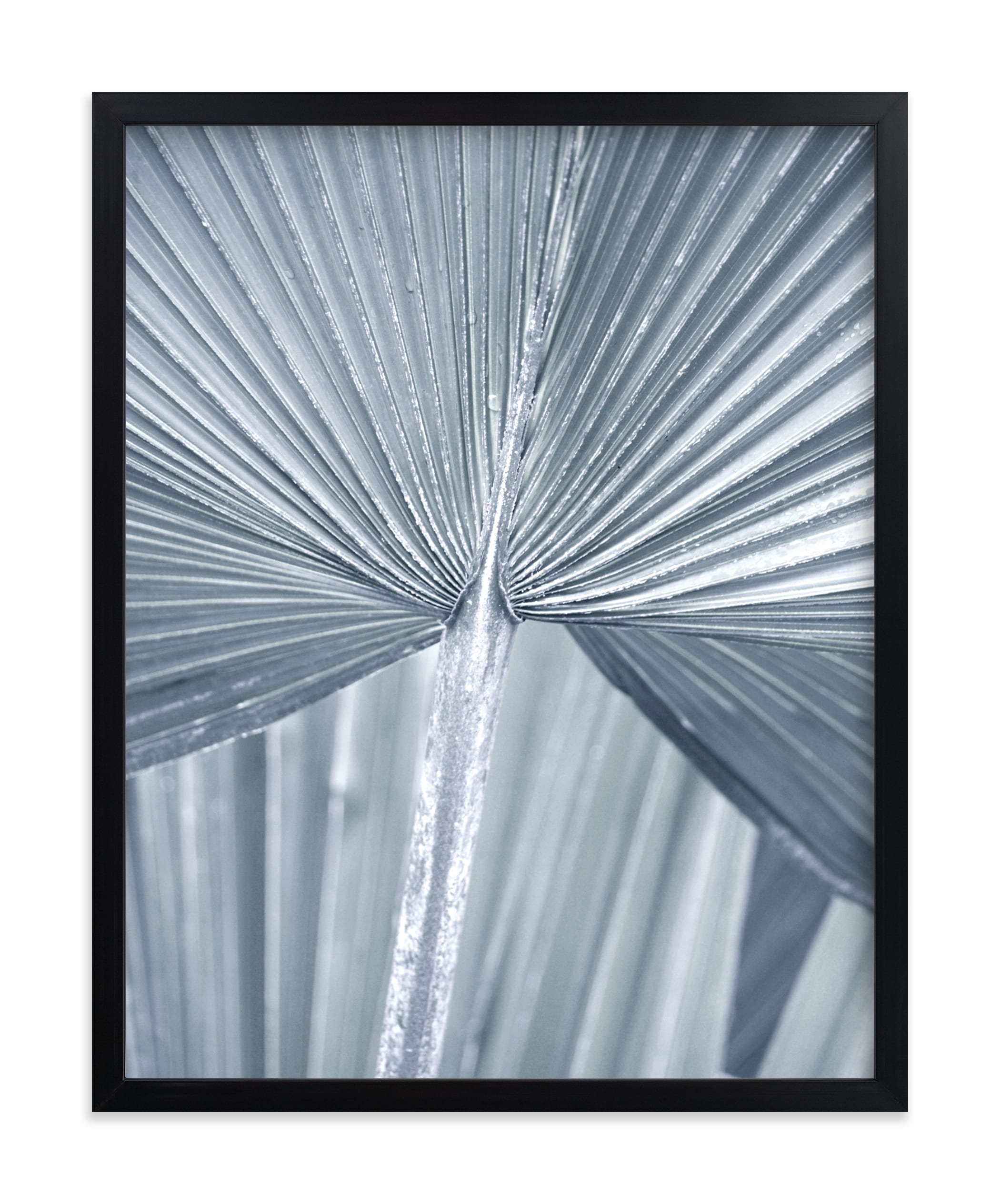 """Botanic 2"" - Limited Edition Art Print by Stellax Creative in beautiful frame options and a variety of sizes."