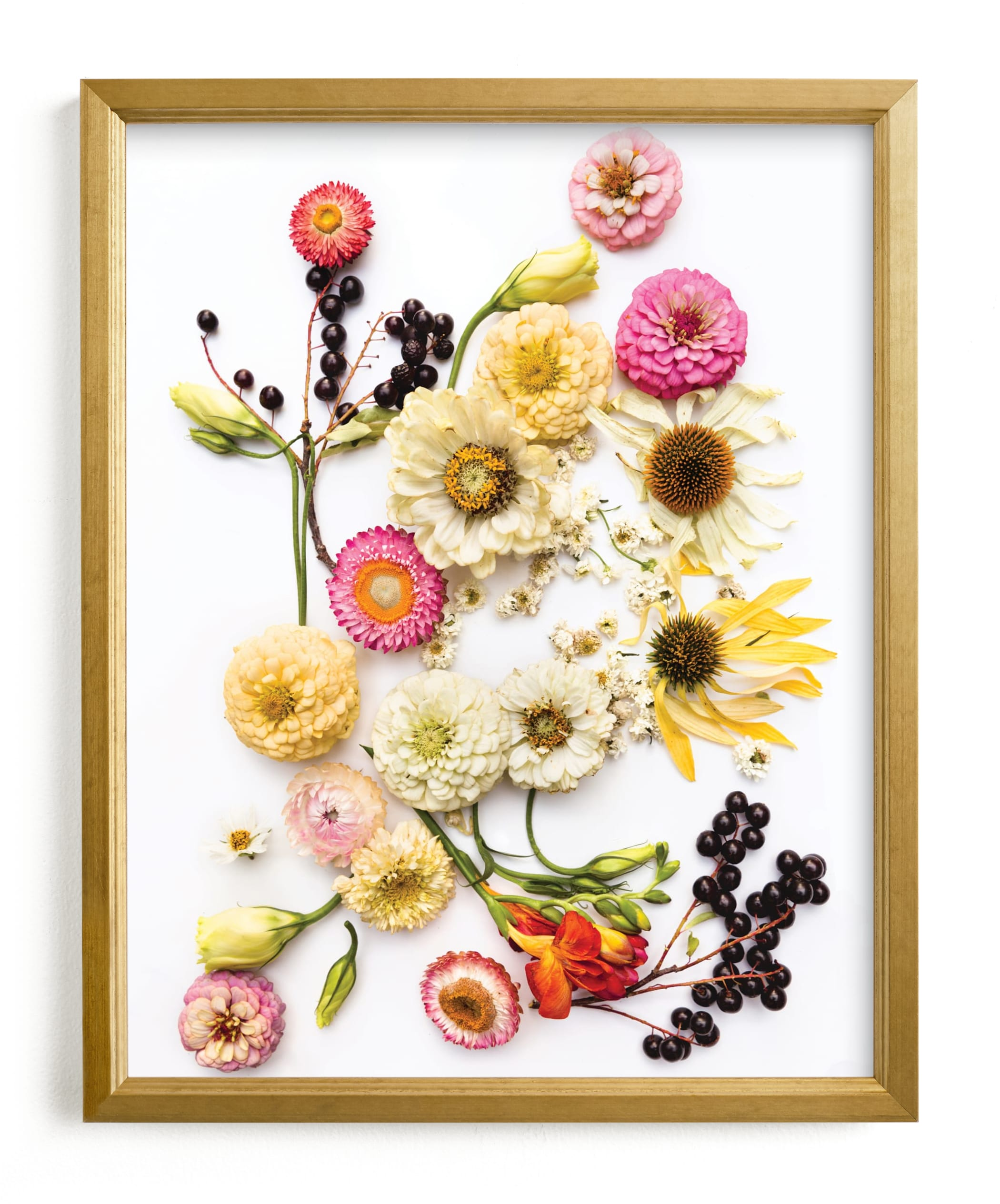 """""""Bloom Baby Bloom"""" - Limited Edition Art Print by Theresa Bear in beautiful frame options and a variety of sizes."""