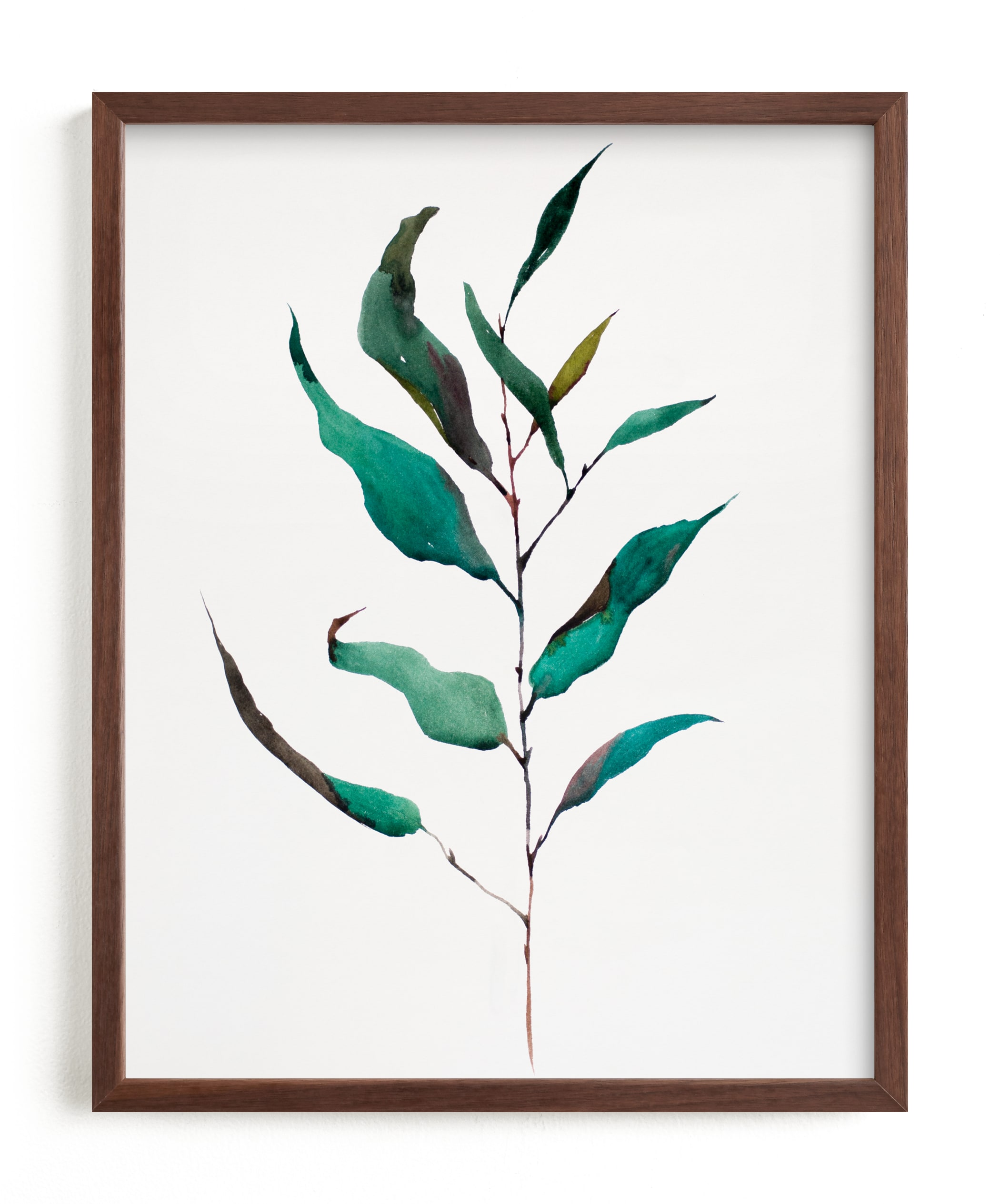 """Eucalyptus Foliage"" - Limited Edition Art Print by jinseikou in beautiful frame options and a variety of sizes."
