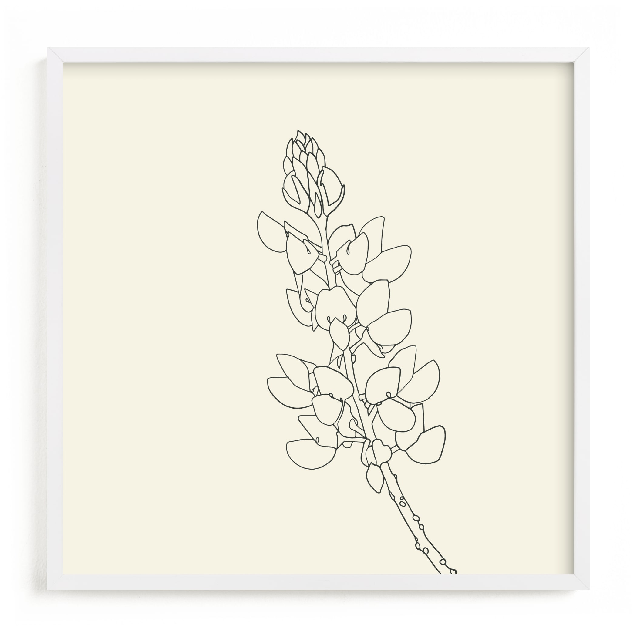 """""""Lupine"""" - Limited Edition Art Print by Jorey Hurley in beautiful frame options and a variety of sizes."""