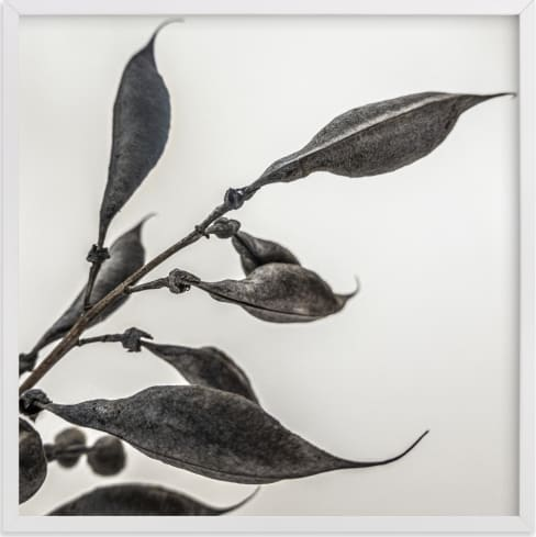 This is a black and white art by Pamela Viola called Organic Pod.