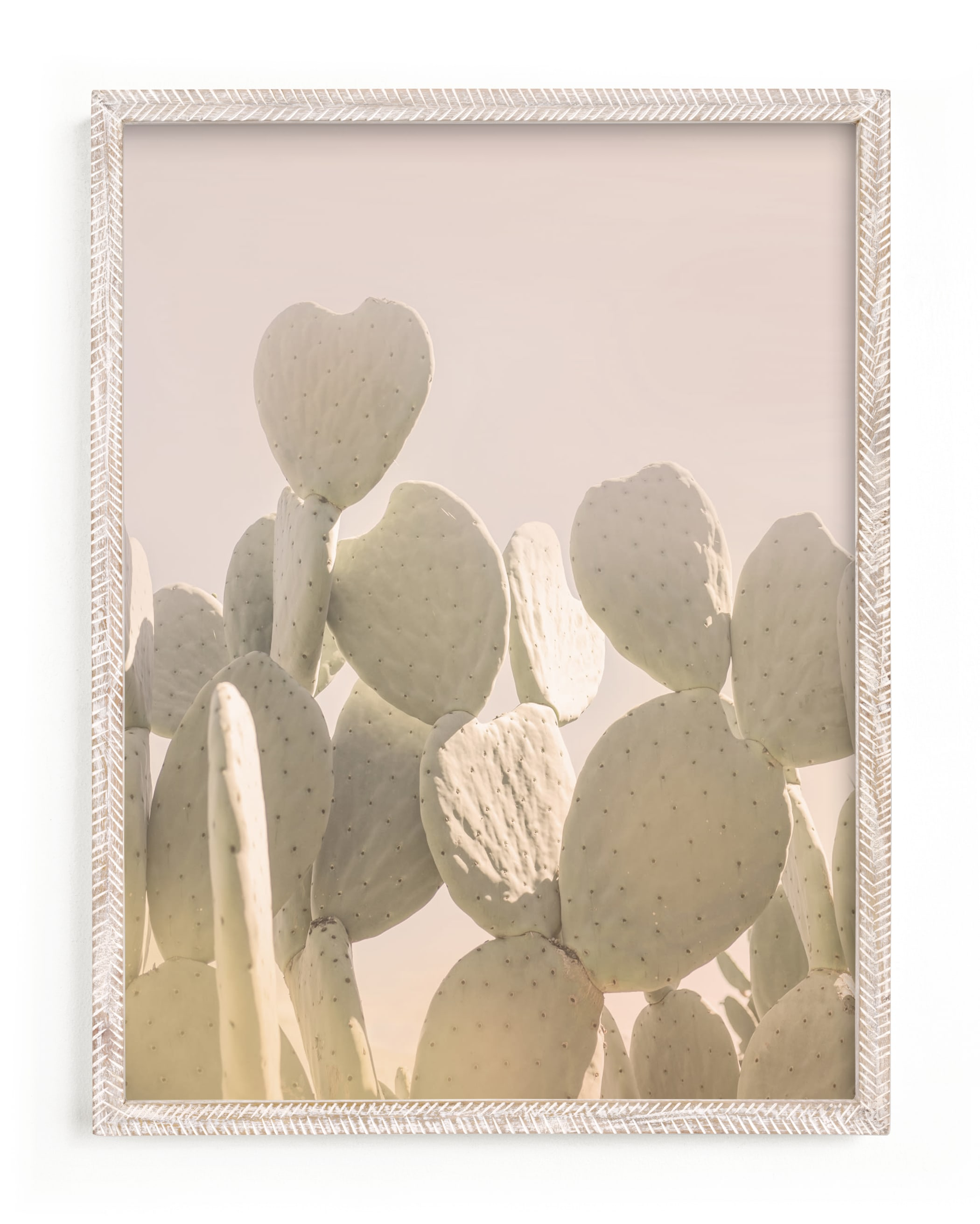 """Pink and Yellow Cactus"" - Limited Edition Art Print by Wilder California in beautiful frame options and a variety of sizes."