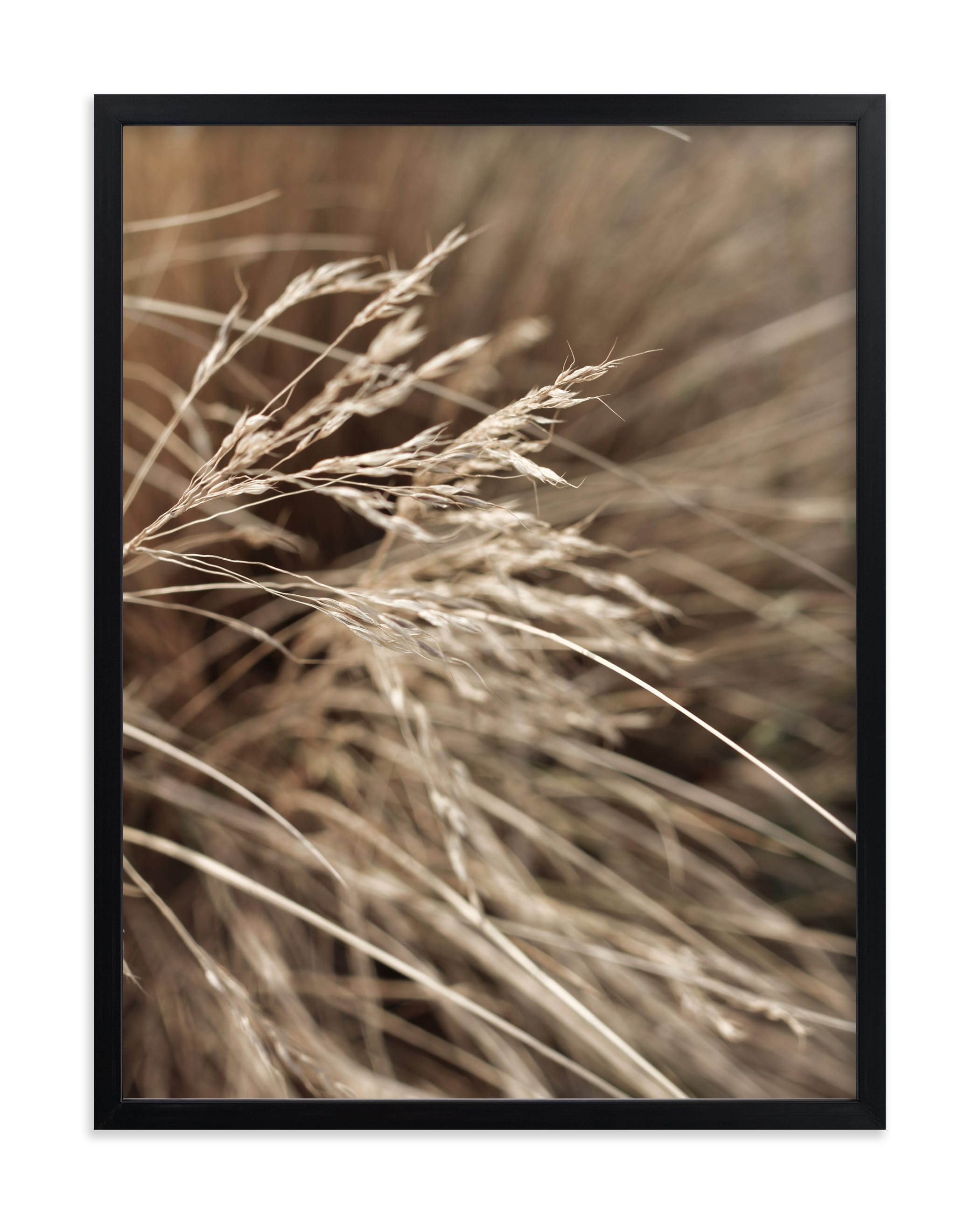 """""""Summertime 2"""" - Limited Edition Art Print by Bethania Lima in beautiful frame options and a variety of sizes."""