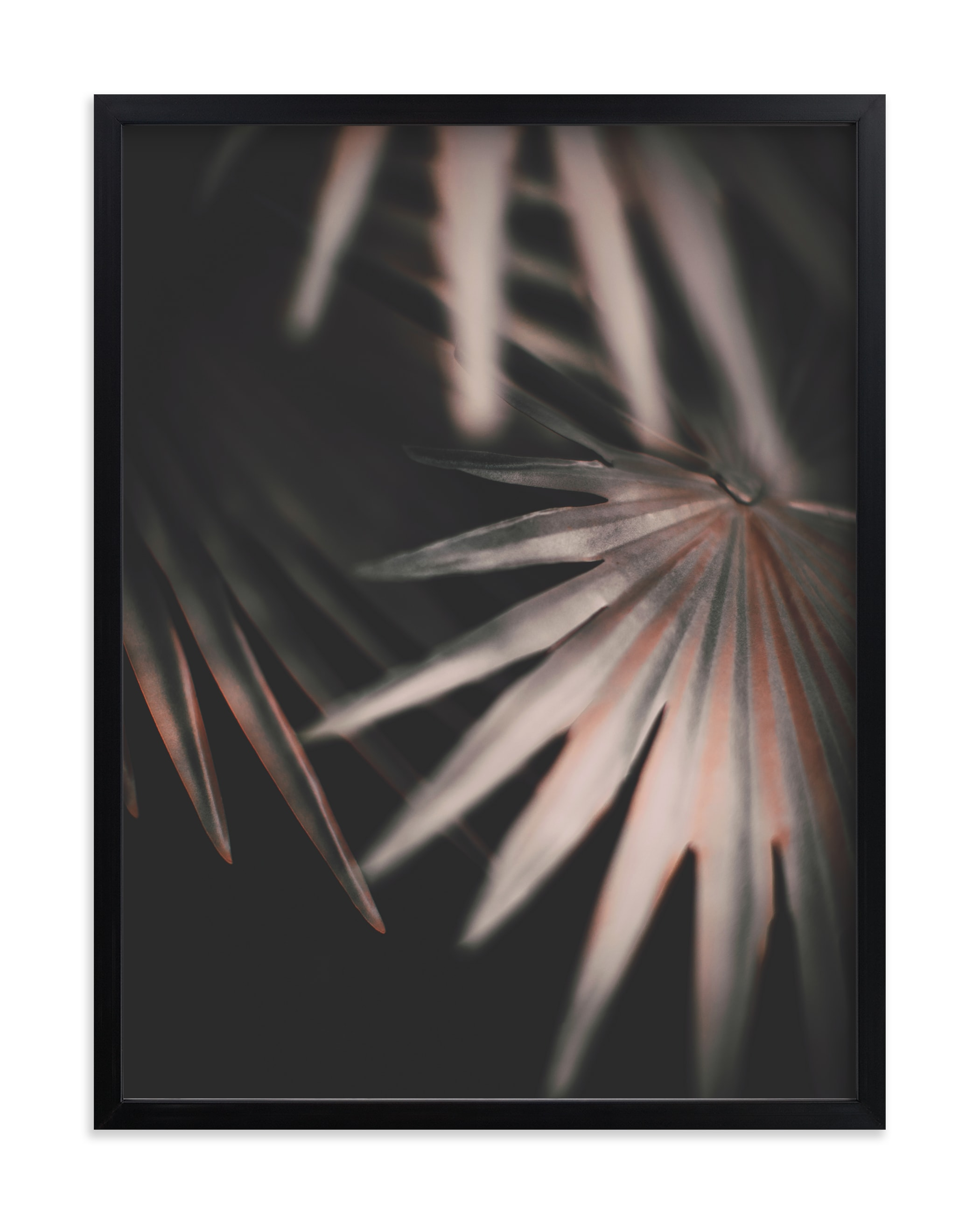 """Copper Ferns 2"" - Limited Edition Art Print by Alicia Abla in beautiful frame options and a variety of sizes."