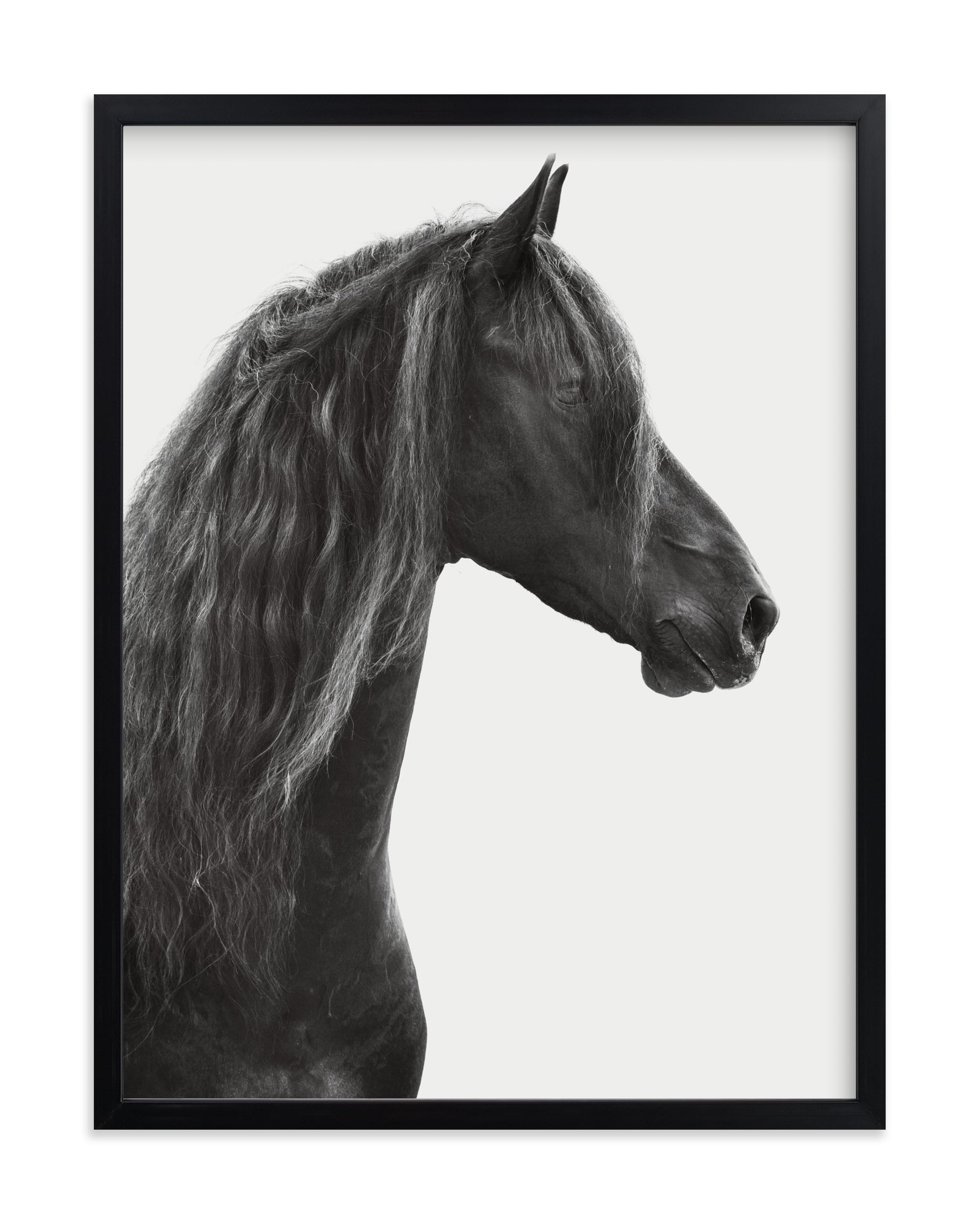 """""""Dark Horse"""" - Limited Edition Art Print by Irene Suchocki in beautiful frame options and a variety of sizes."""
