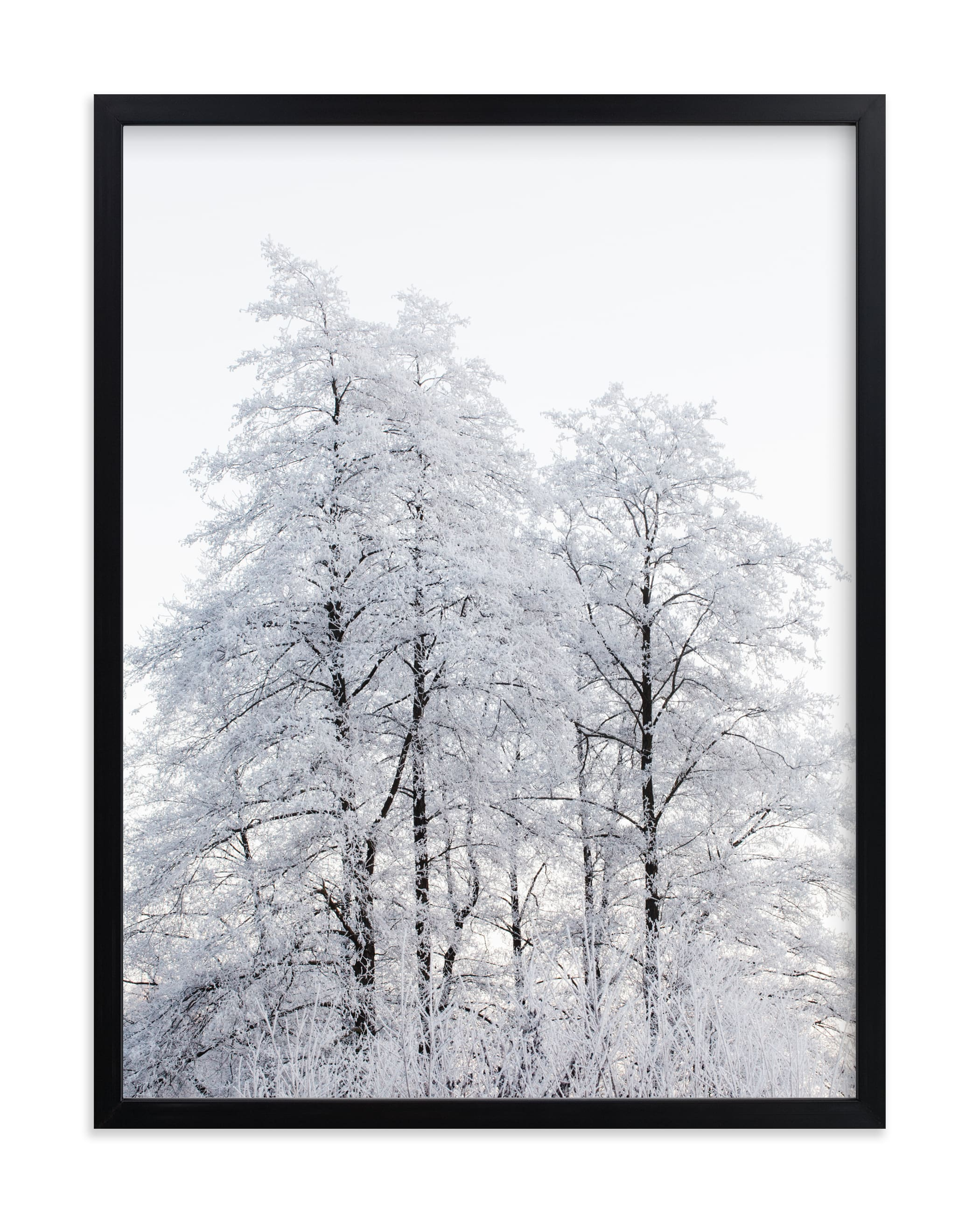 """""""Winter nature"""" - Limited Edition Art Print by Magdalena Kucova in beautiful frame options and a variety of sizes."""