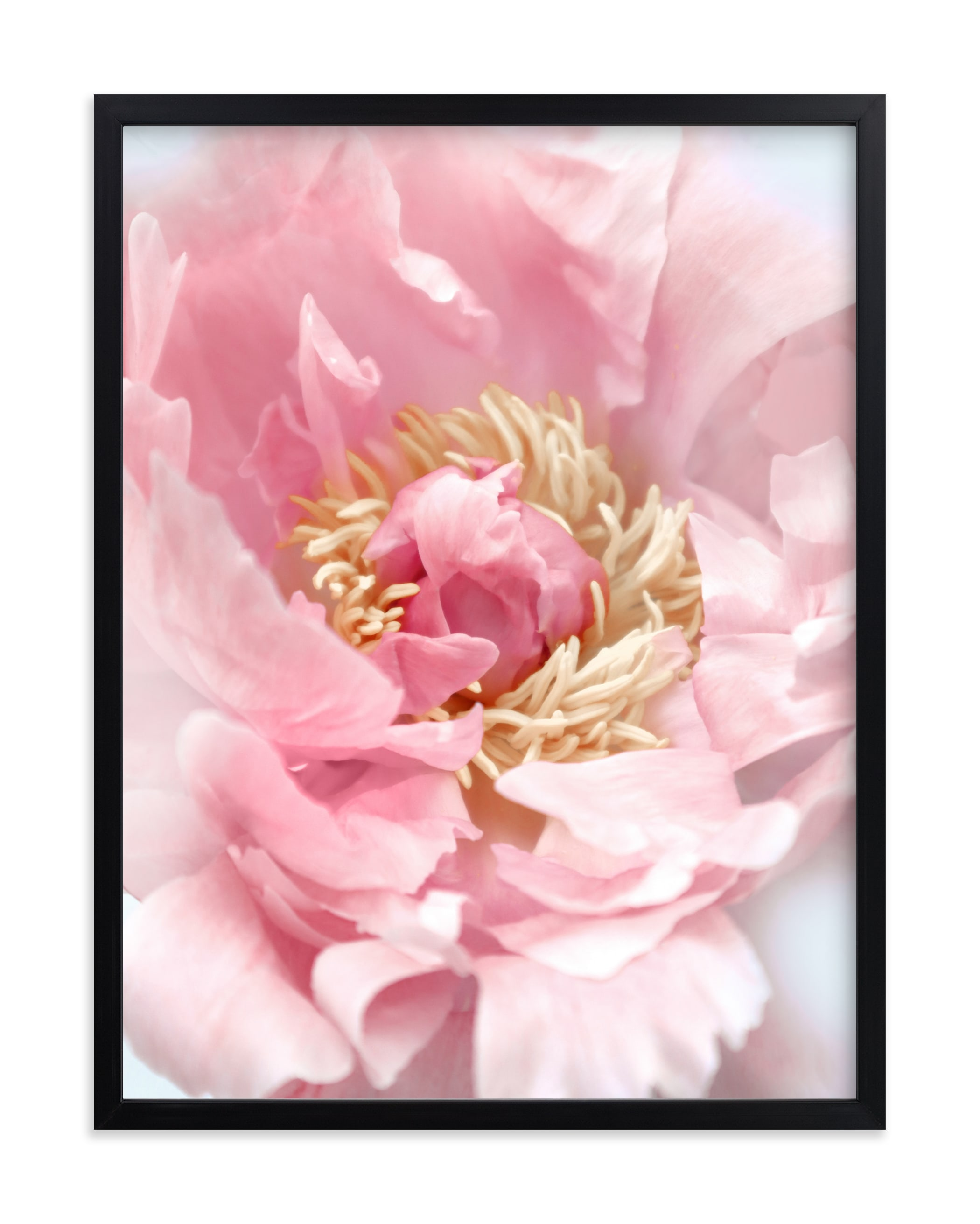 """""""Bego peony photo"""" by Rosana Laiz Blursbyai in beautiful frame options and a variety of sizes."""