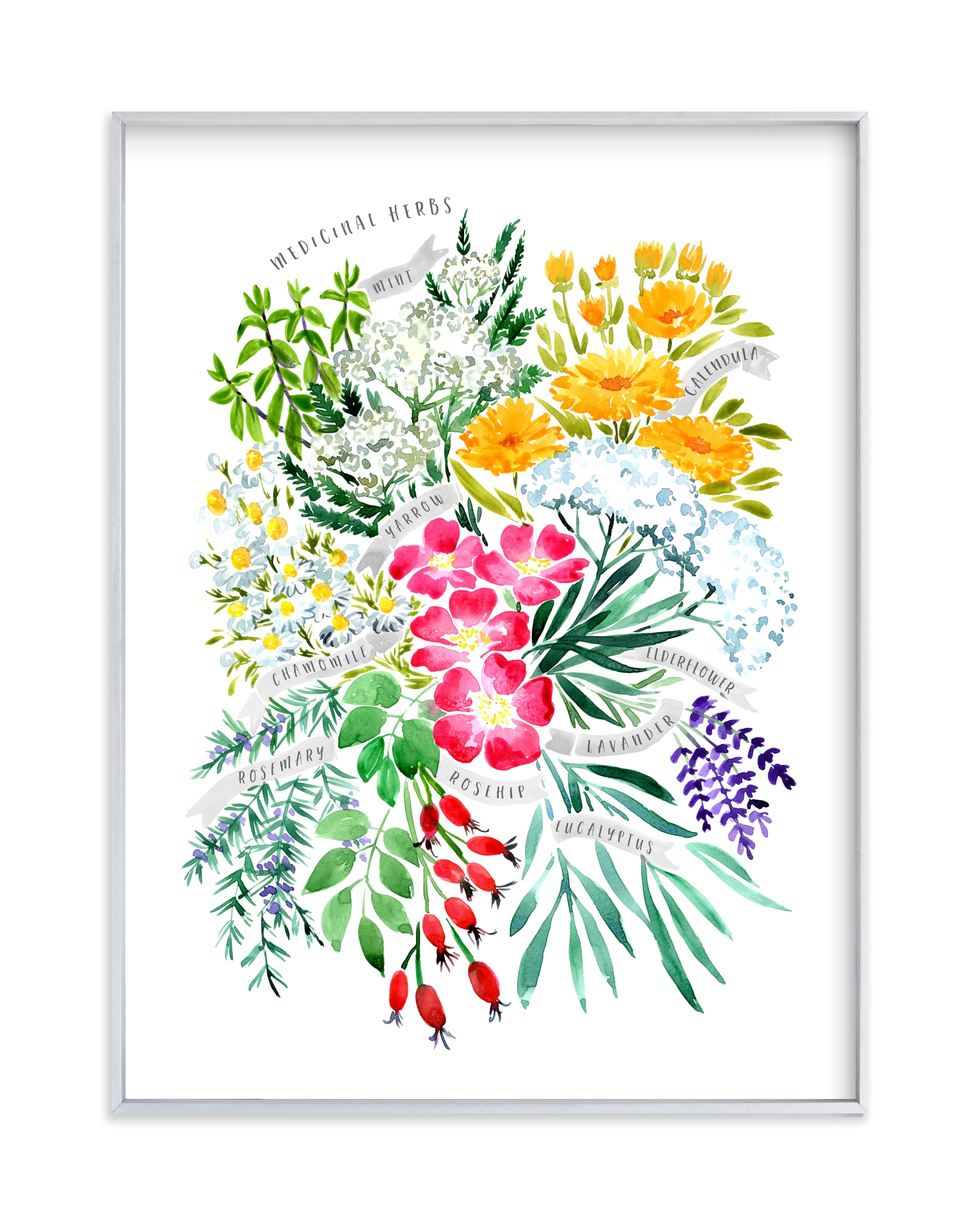 """Medicinal herbs bouquet"" by Rosana Laiz Blursbyai in beautiful frame options and a variety of sizes."