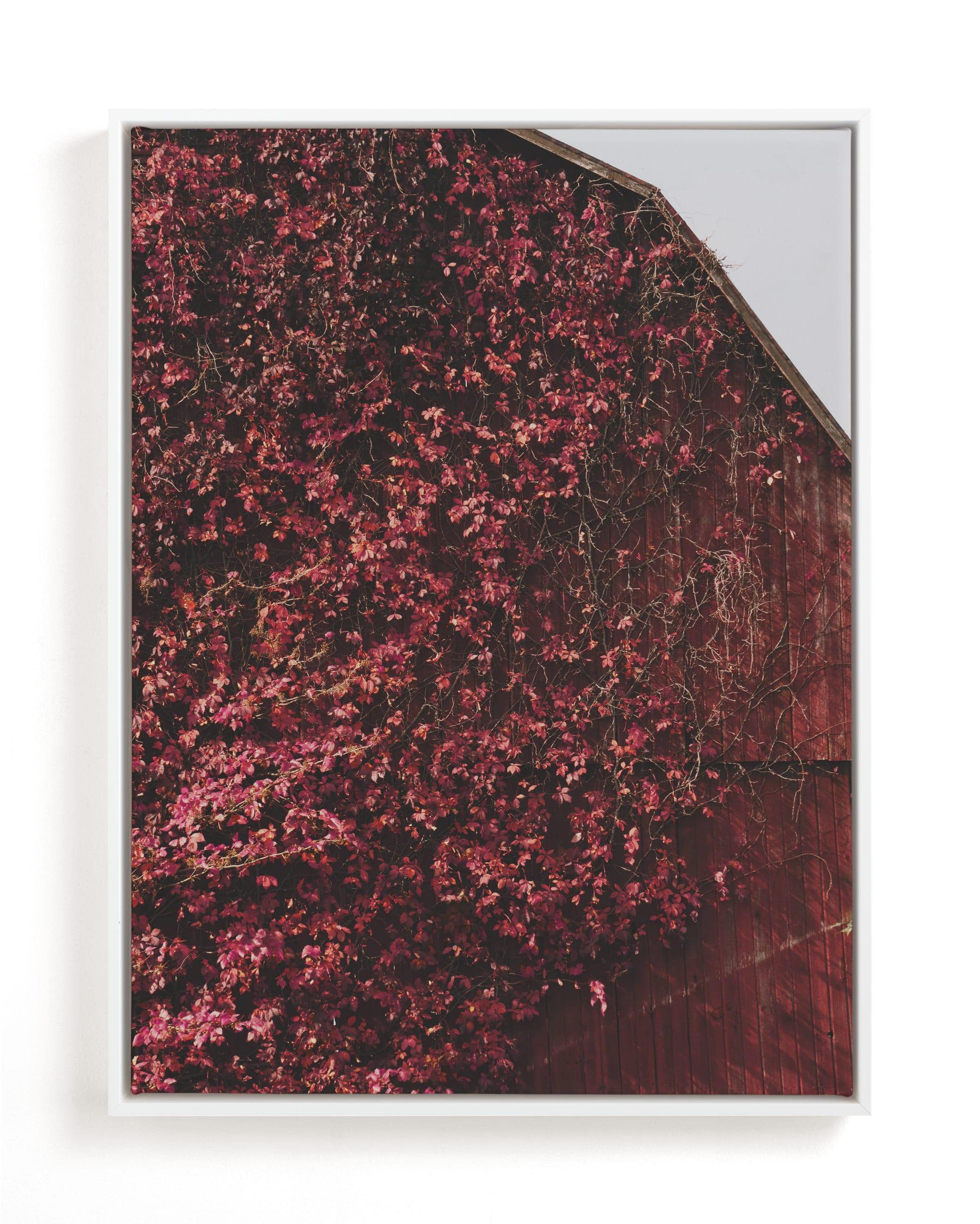 Barn Romance Art Print