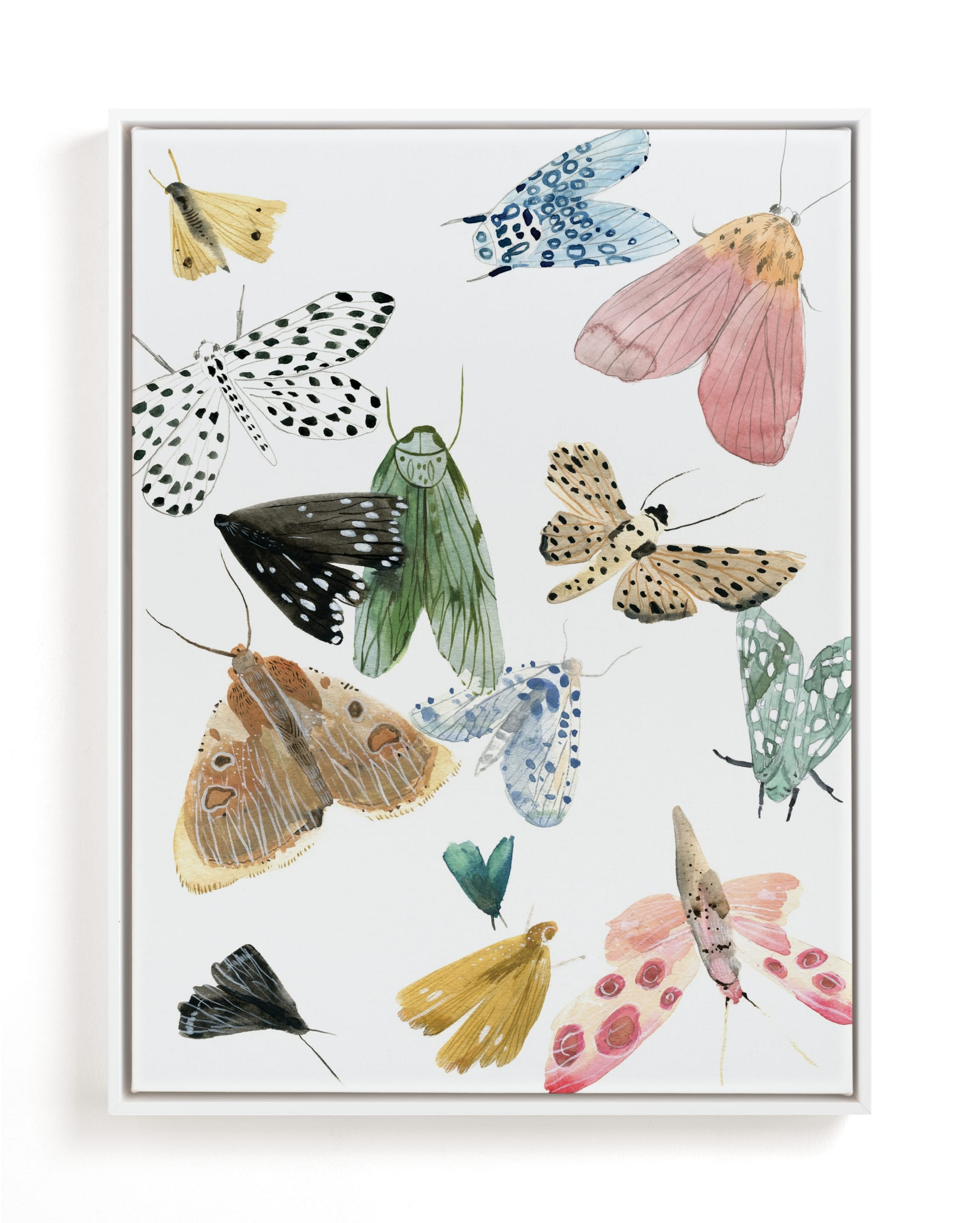 """""""Moths"""" - Limited Edition Art Print by Emilie Simpson in beautiful frame options and a variety of sizes."""