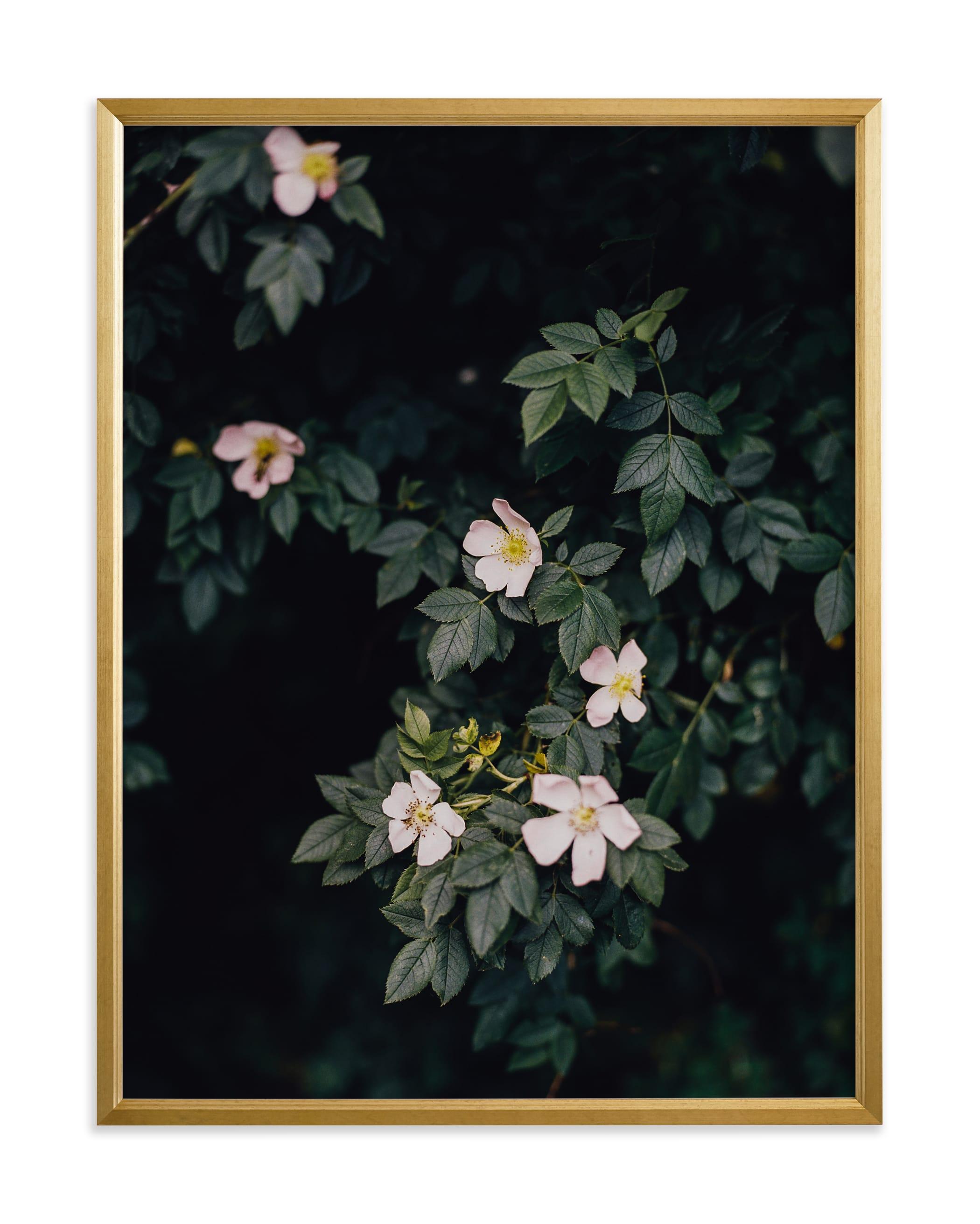 Moody white roses Art Print