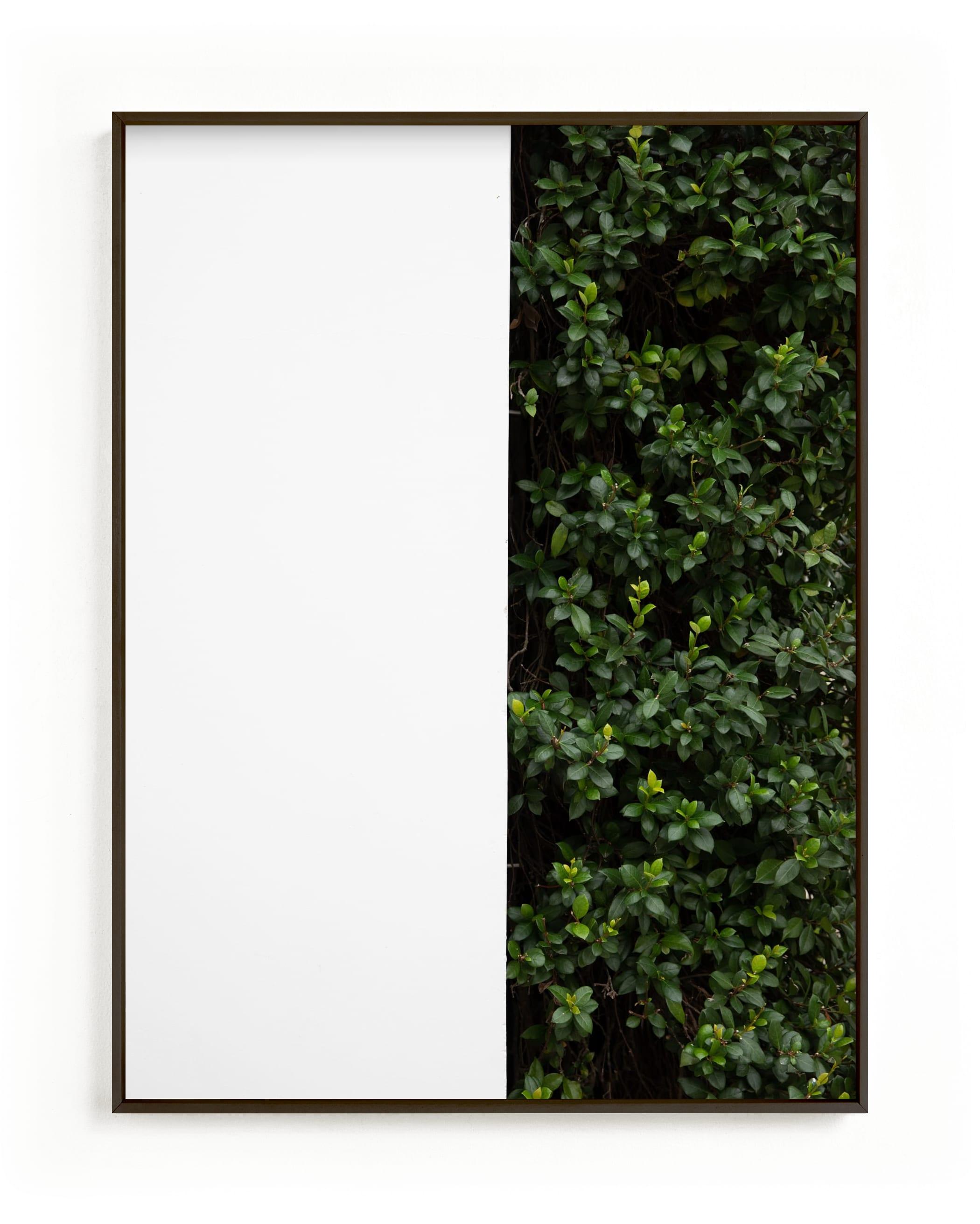 verdant garden III Wall Art Print
