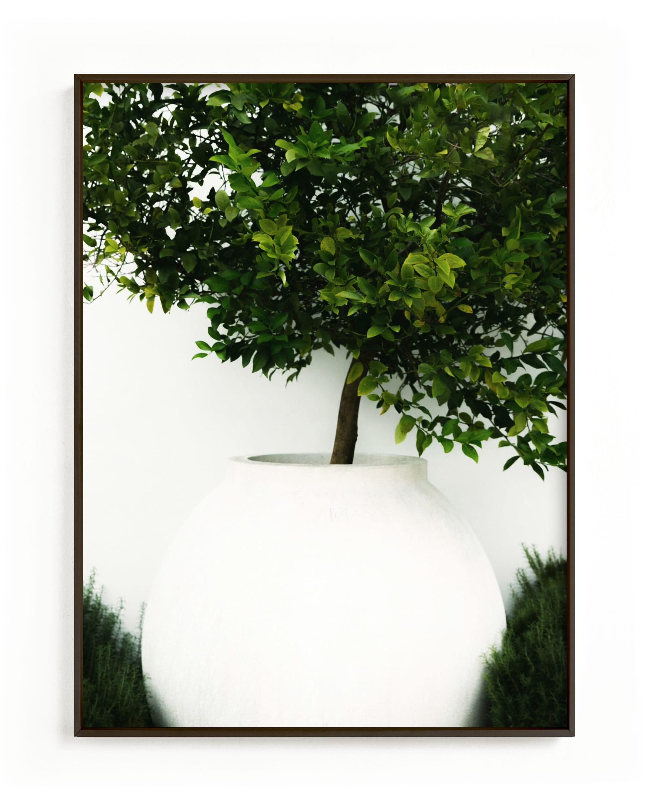 verdant garden II Wall Art Print