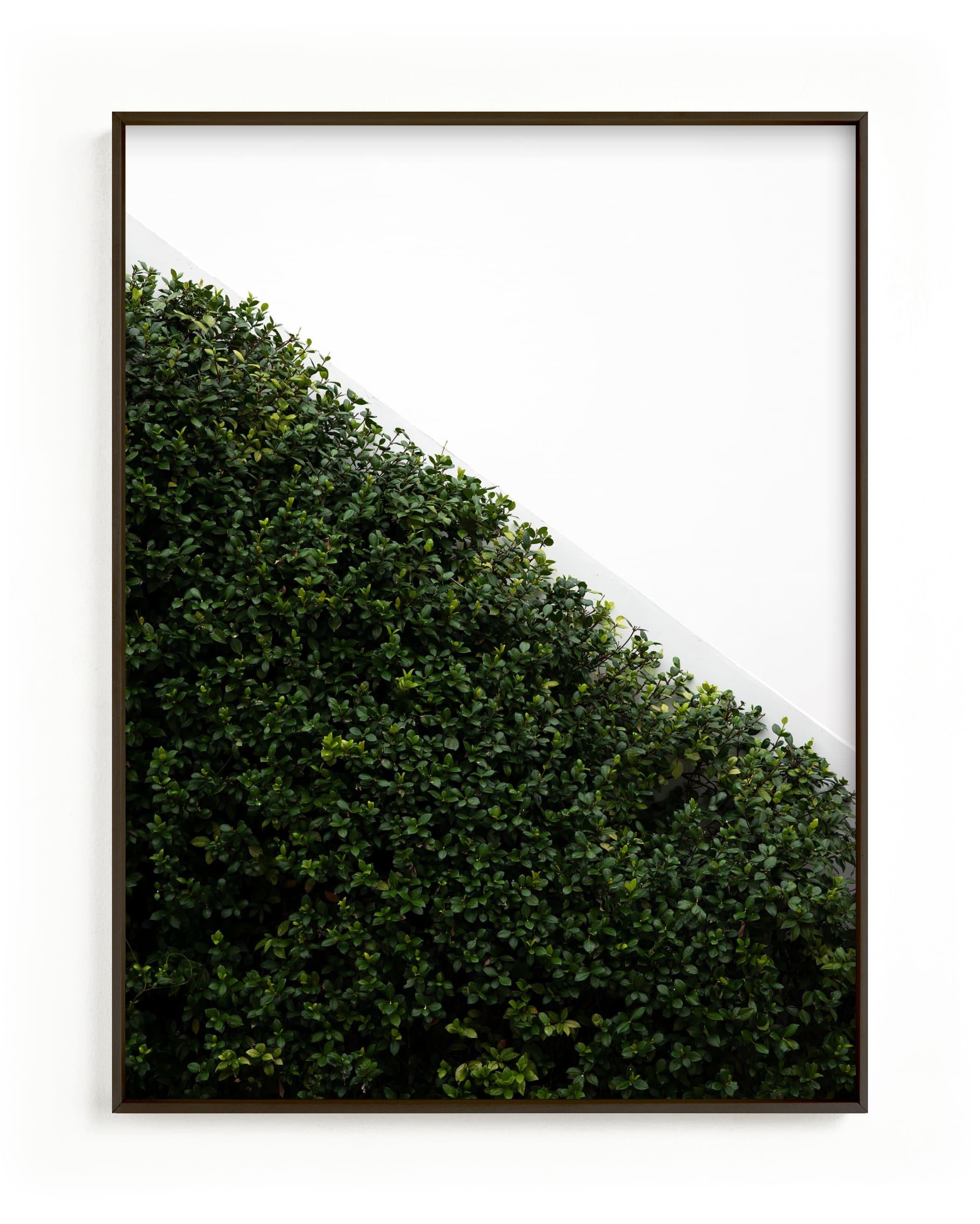 verdant garden I Wall Art Print