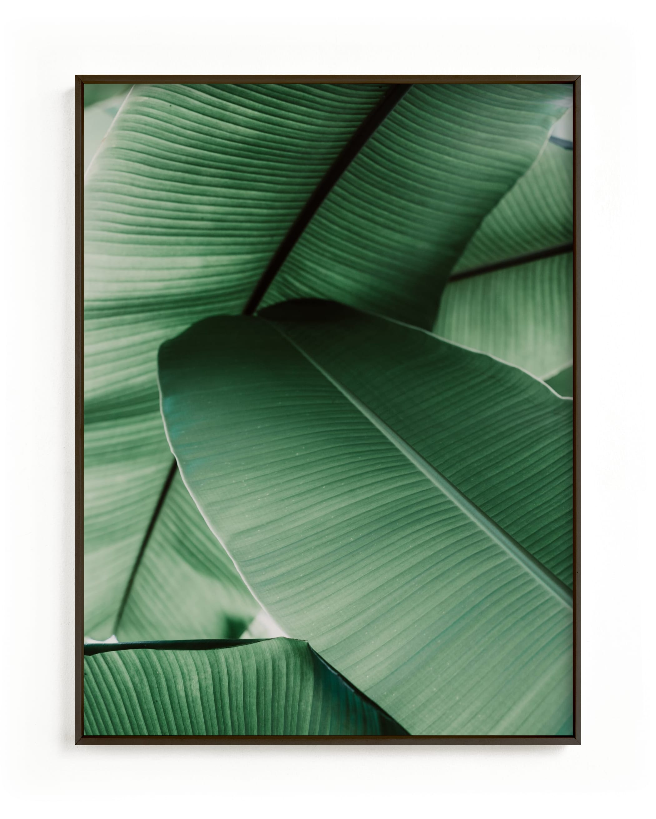 Tropical Leaves Wall Art Prints By Alicia Abla Minted A 1x1 ratio file square 50cmx50cm or any combination. tropical leaves grownup open edition non custom art print by alicia abla