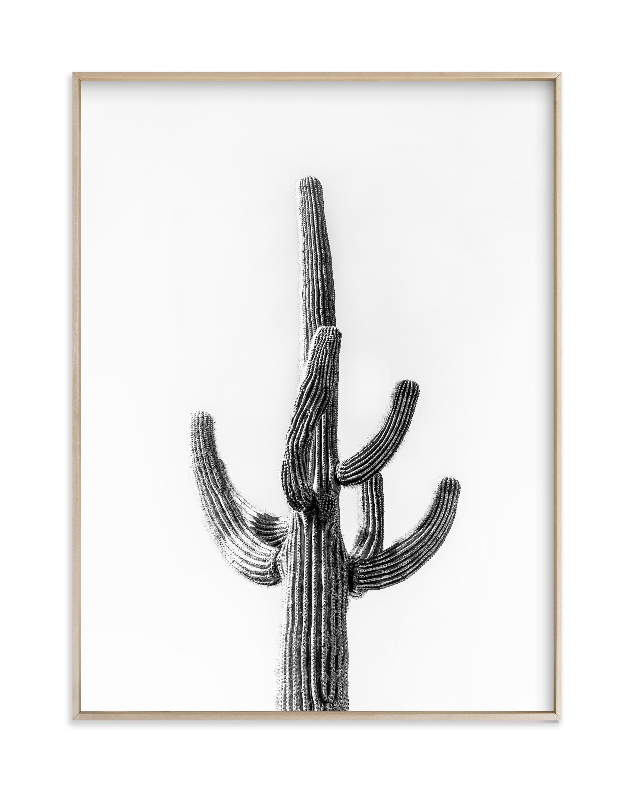 Lone Cactus Wall Art Print