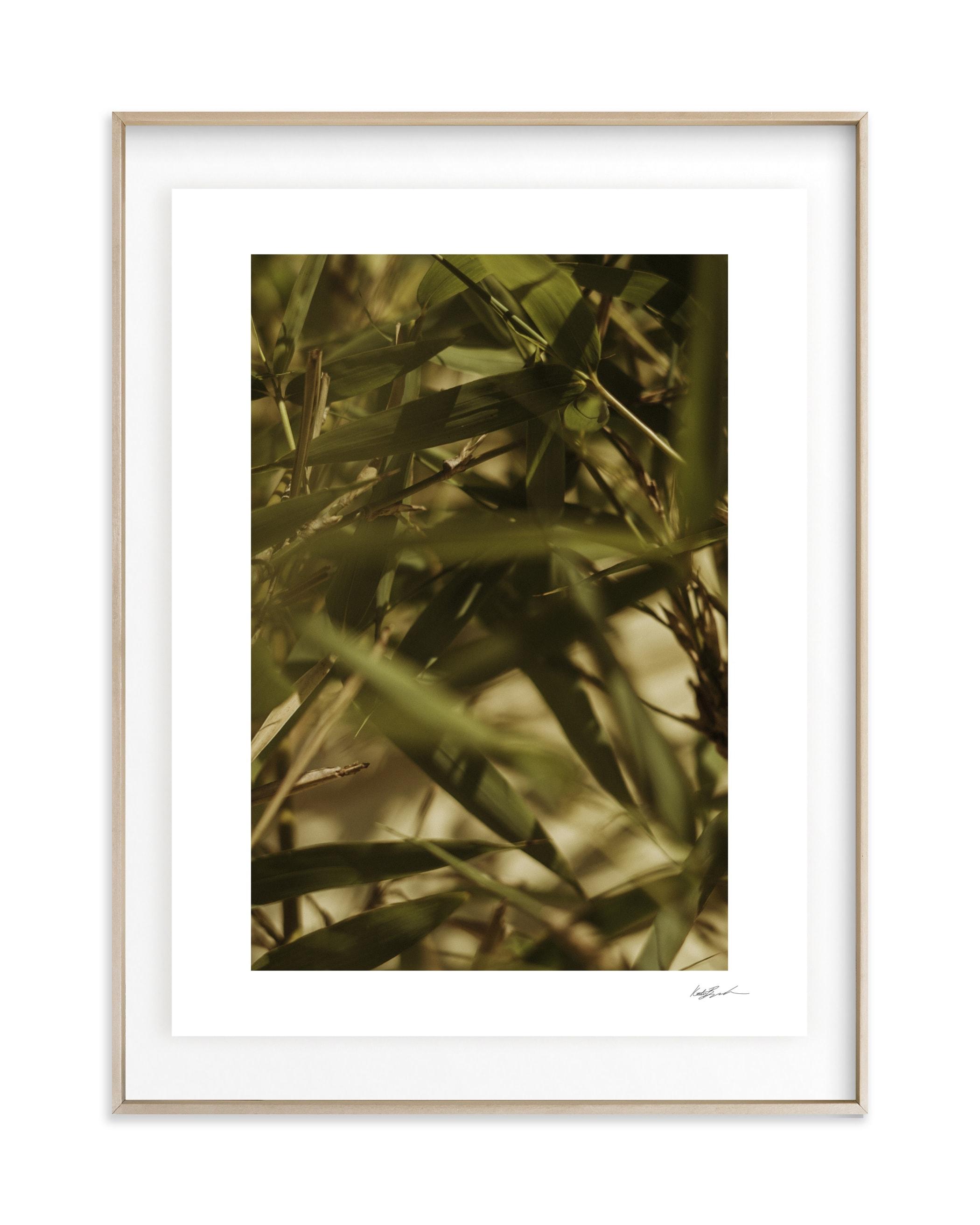 Bamboo Breeze Wall Art Print