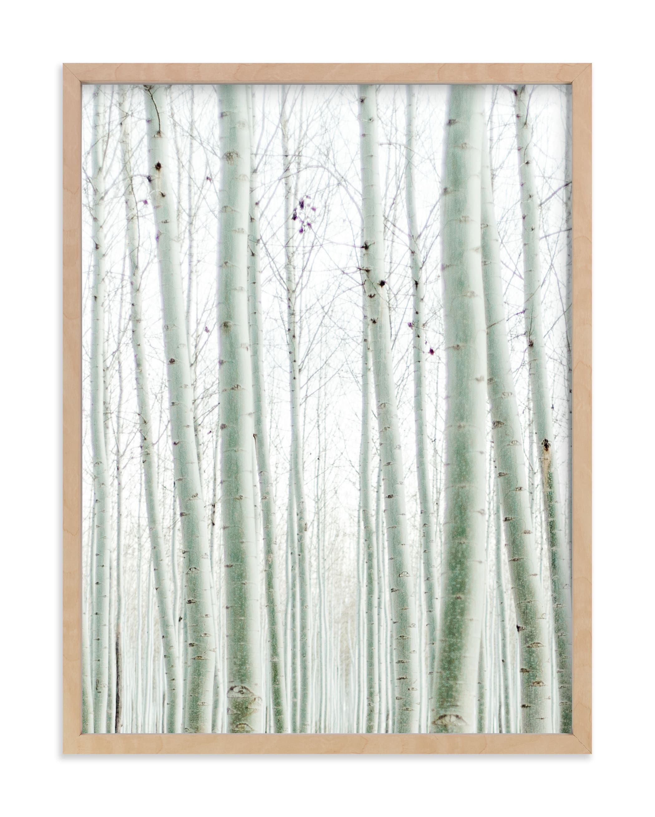 """""""Quiet Poplars"""" - Limited Edition Art Print by Jenni Kupelian in beautiful frame options and a variety of sizes."""
