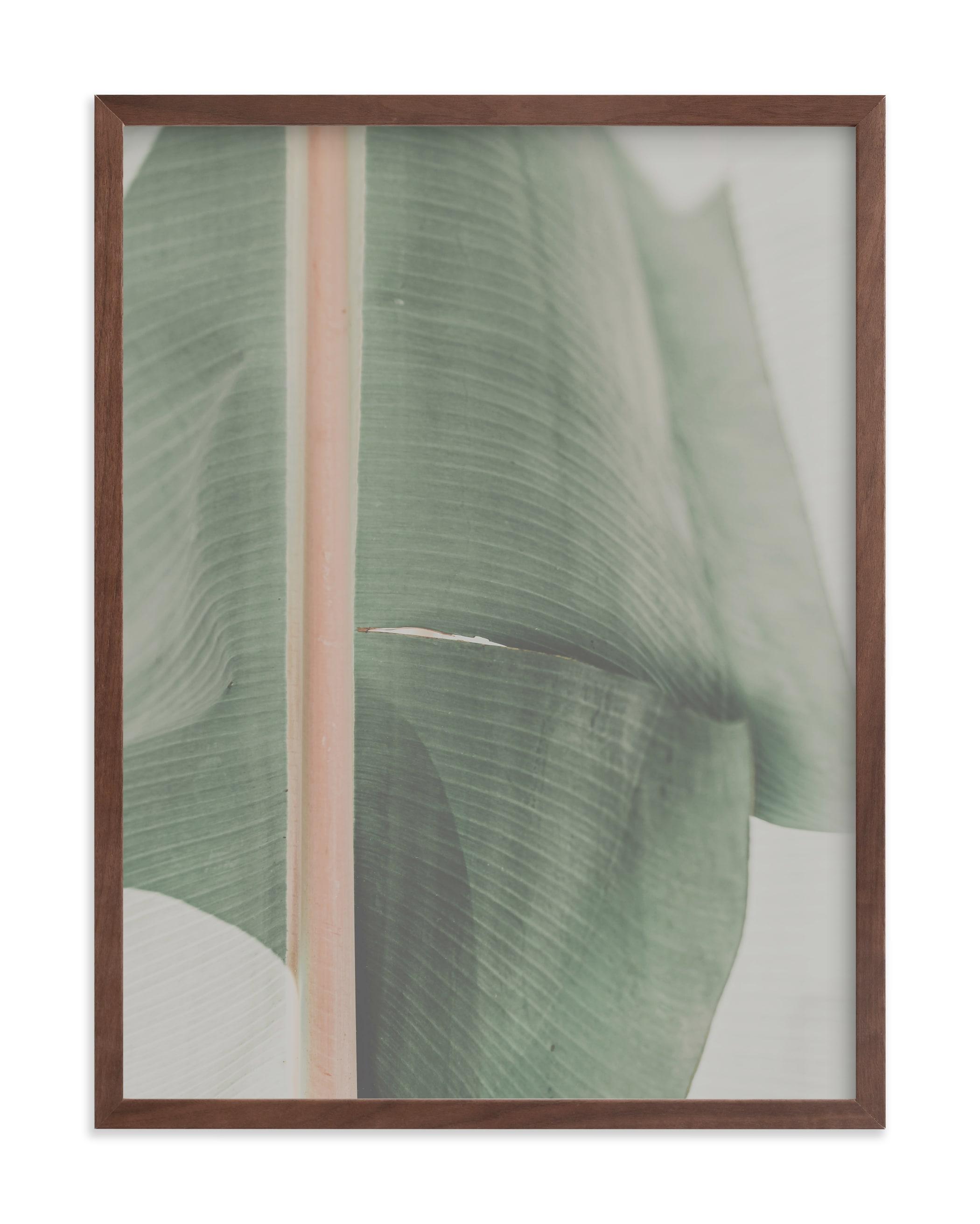 This is a grey art by Alicia Abla called rainforest leaf.