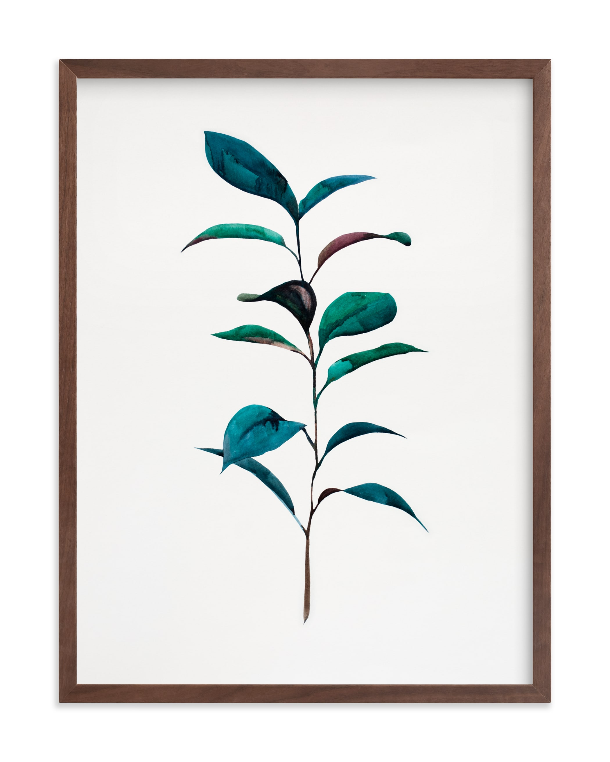 """Ruscus"" - Grownup Open Edition Non-custom Art Print by jinseikou in beautiful frame options and a variety of sizes."