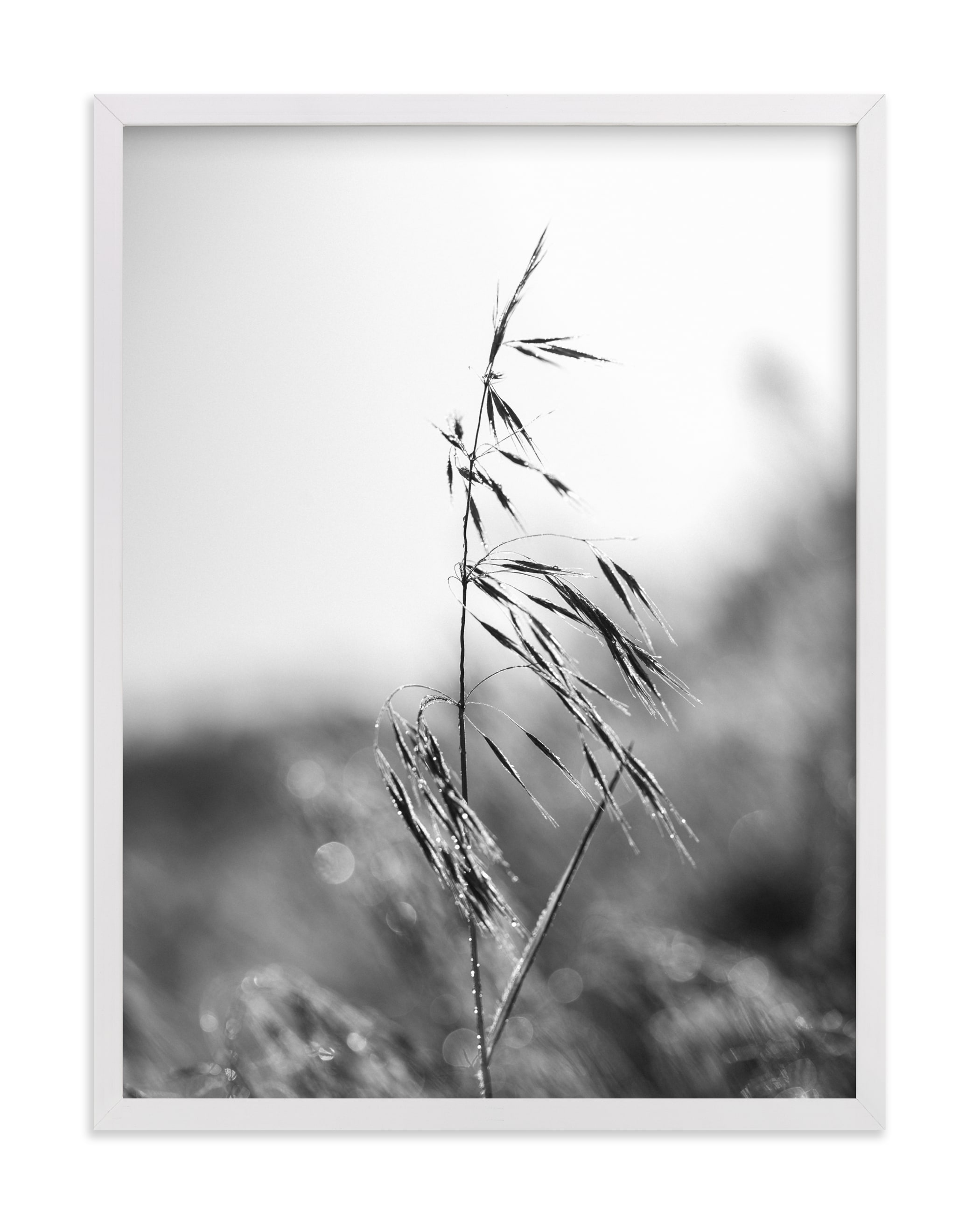 """""""Dancing grass"""" - Limited Edition Art Print by Magdalena Kucova in beautiful frame options and a variety of sizes."""