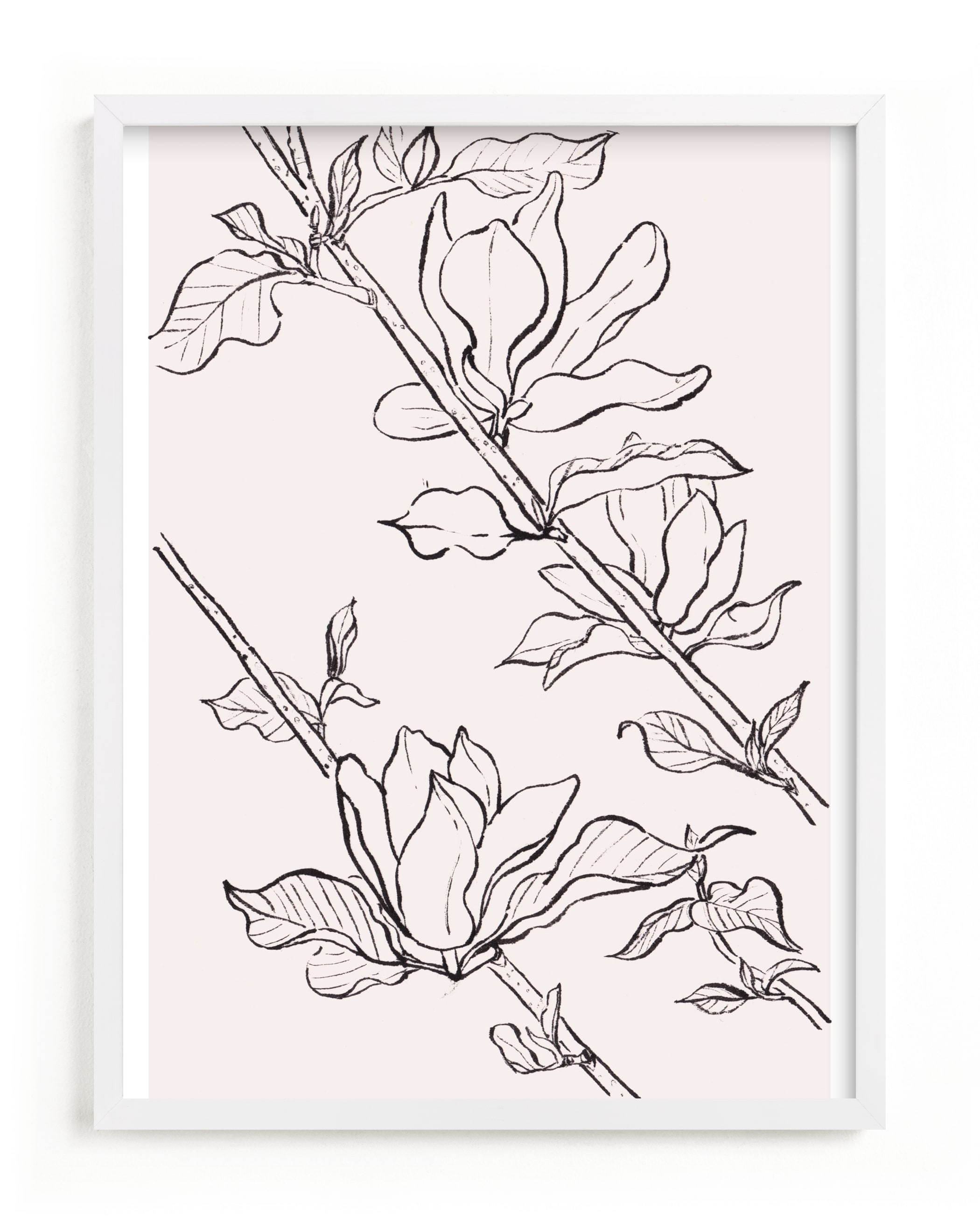 """magnolia study"" - Limited Edition Art Print by Qing Ji in beautiful frame options and a variety of sizes."