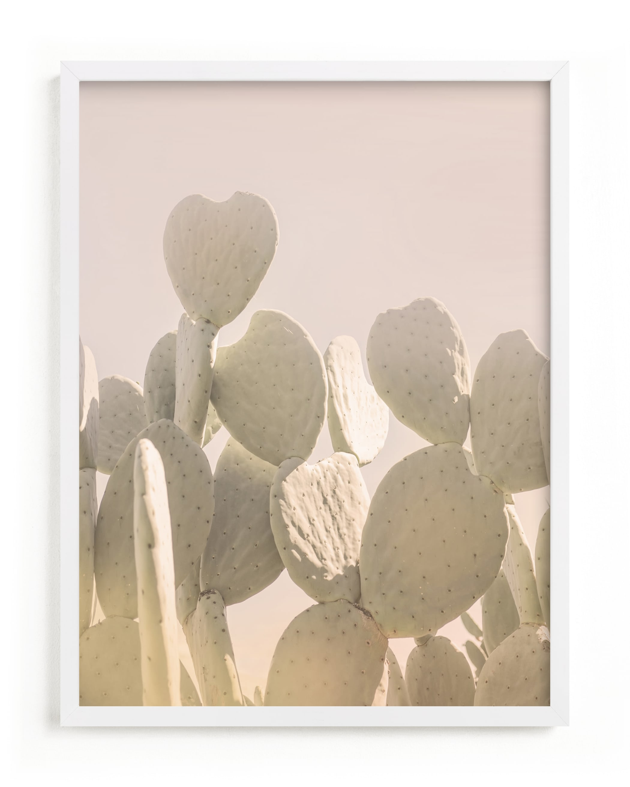 """""""Pink and Yellow Cactus"""" - Limited Edition Art Print by Wilder California in beautiful frame options and a variety of sizes."""