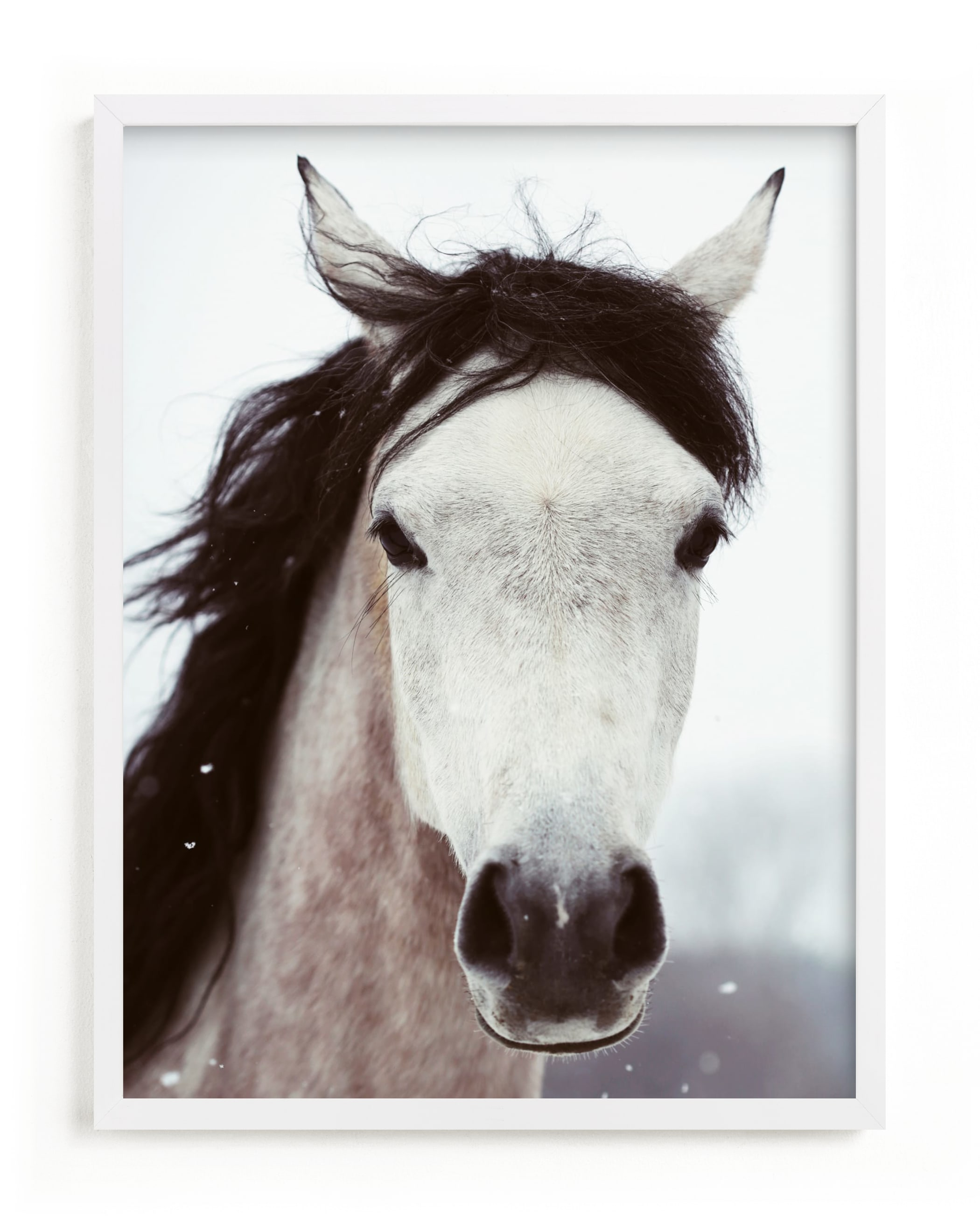 Winter Horse Wall Art Prints By Alicia Bock Minted