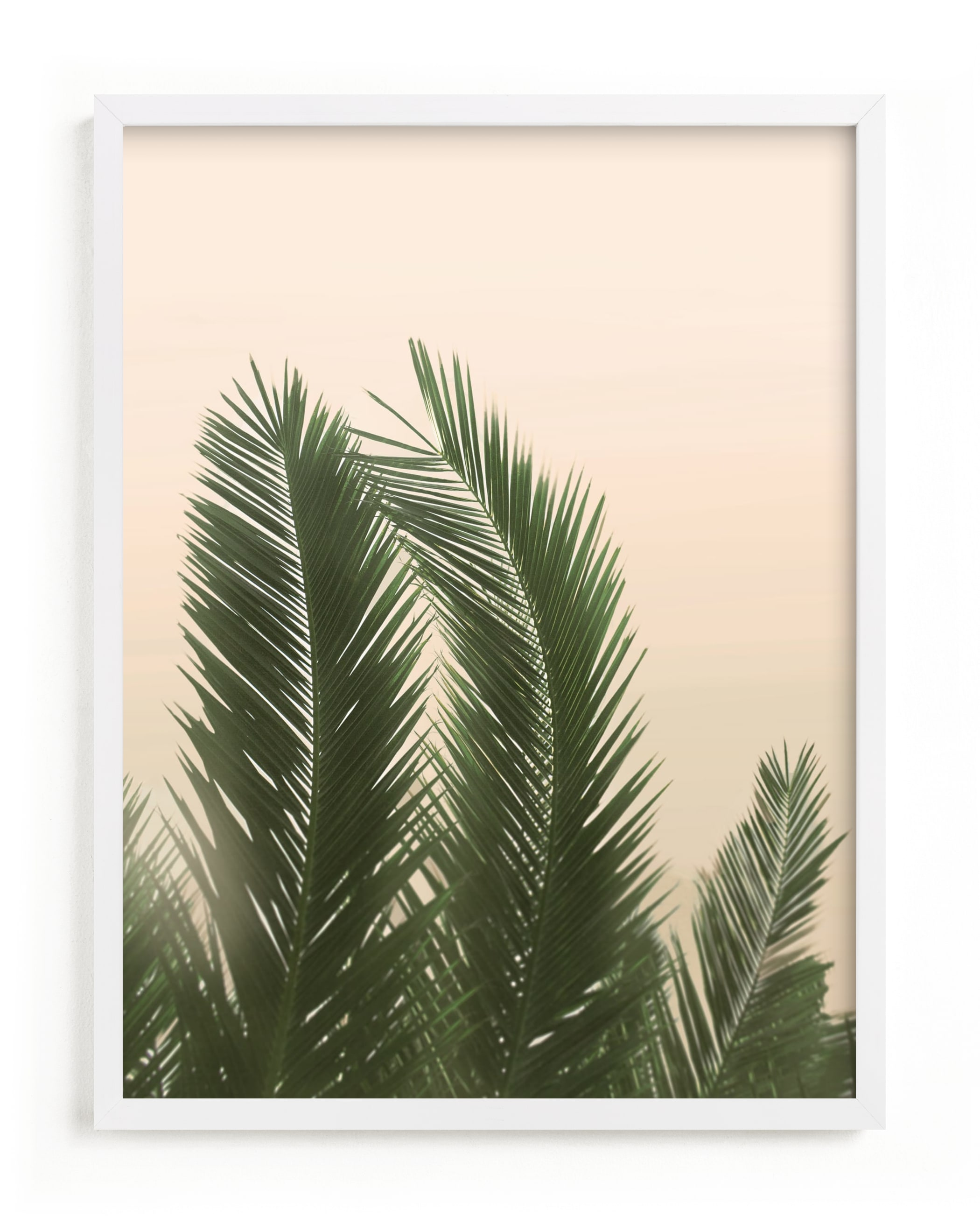 """Tropical Palm Tree"" - Limited Edition Art Print by Wilder California in beautiful frame options and a variety of sizes."