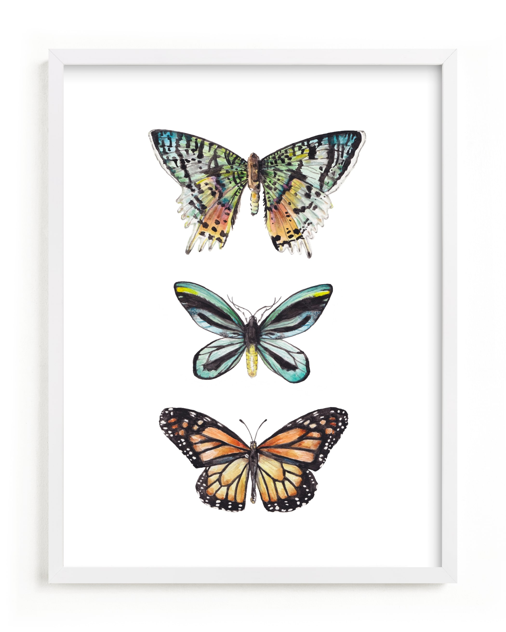 """Butterfly Colorful Watercolors"" - Limited Edition Art Print by Lauren Rogoff in beautiful frame options and a variety of sizes."