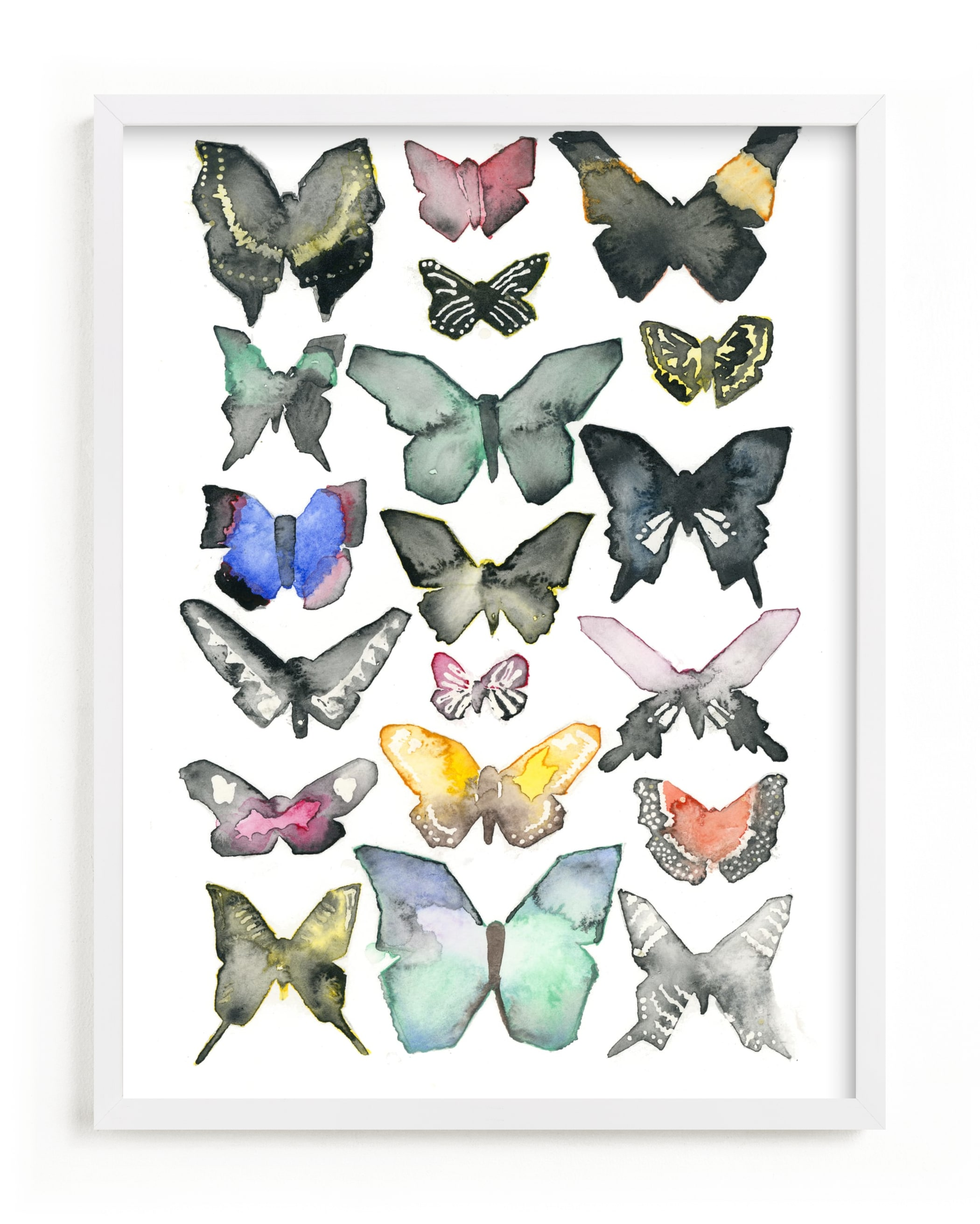 """""""Watercolor Butterfly Collection"""" - Limited Edition Art Print by Heidi Miller Lowell in beautiful frame options and a variety of sizes."""