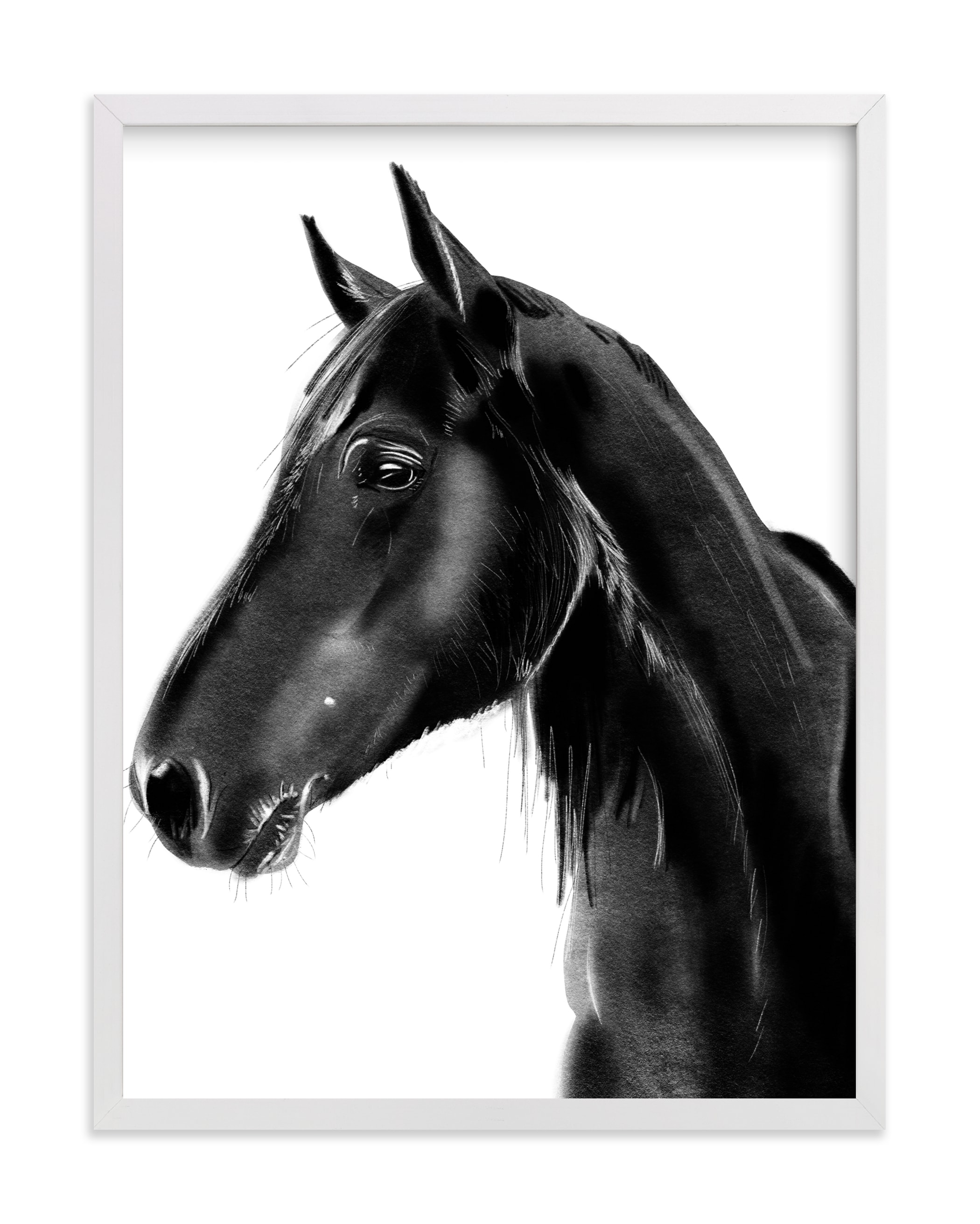 """""""Horse Charcoal Drawing"""" by Becky Nimoy in beautiful frame options and a variety of sizes."""