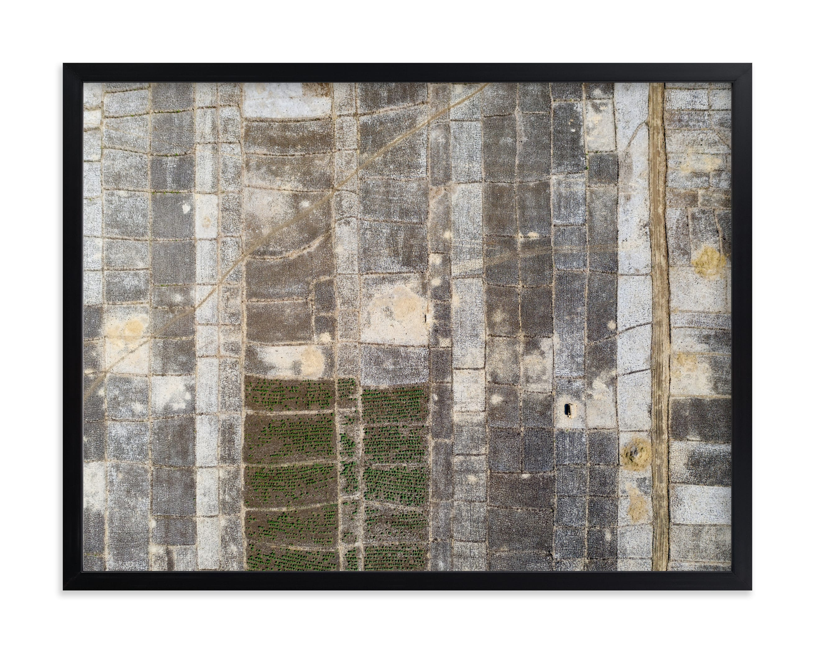 """""""transition"""" - Limited Edition Art Print by Alaric Yanos in beautiful frame options and a variety of sizes."""
