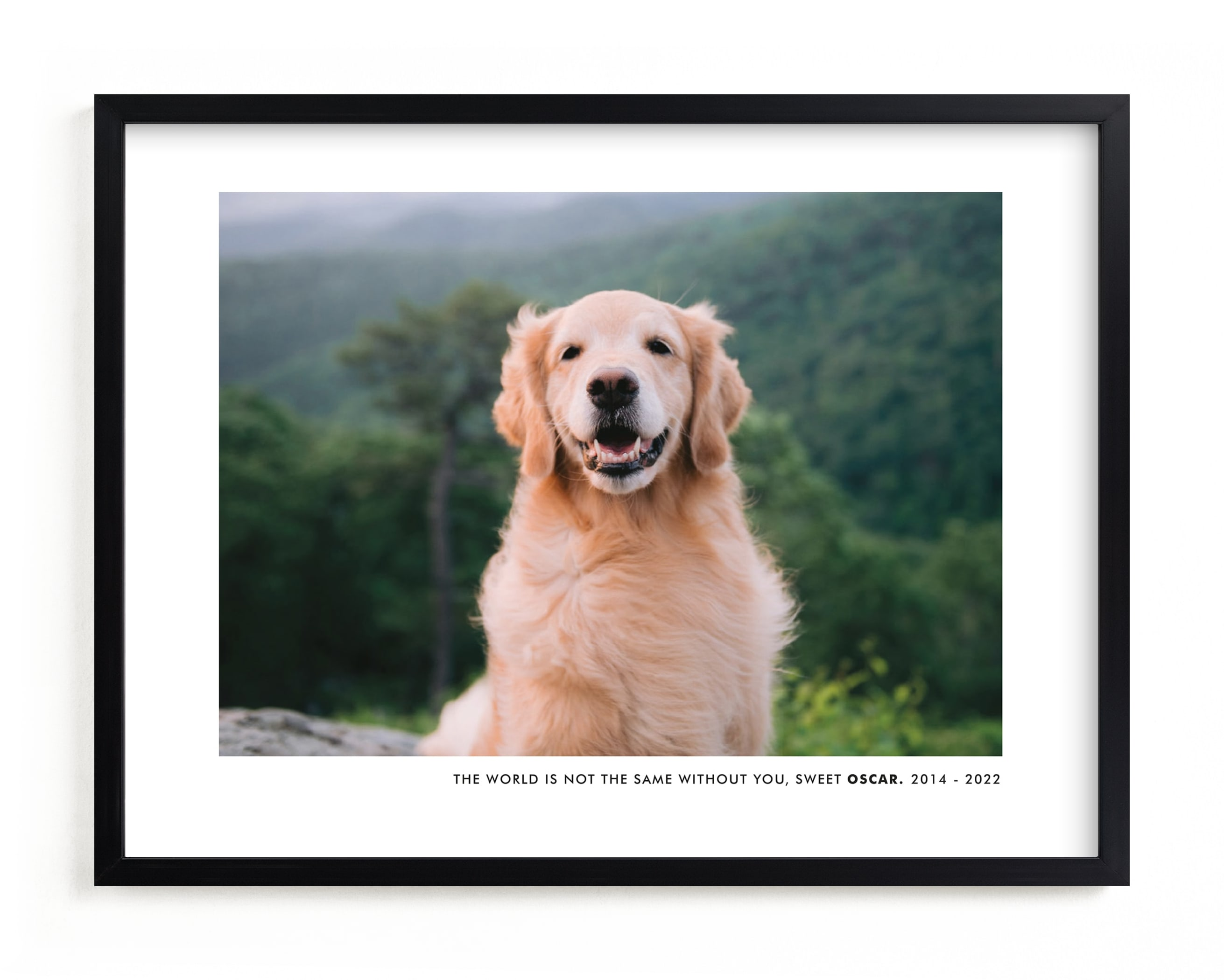 """""""Without You"""" - Custom Photo Art Print by Sara Hicks Malone in beautiful frame options and a variety of sizes."""