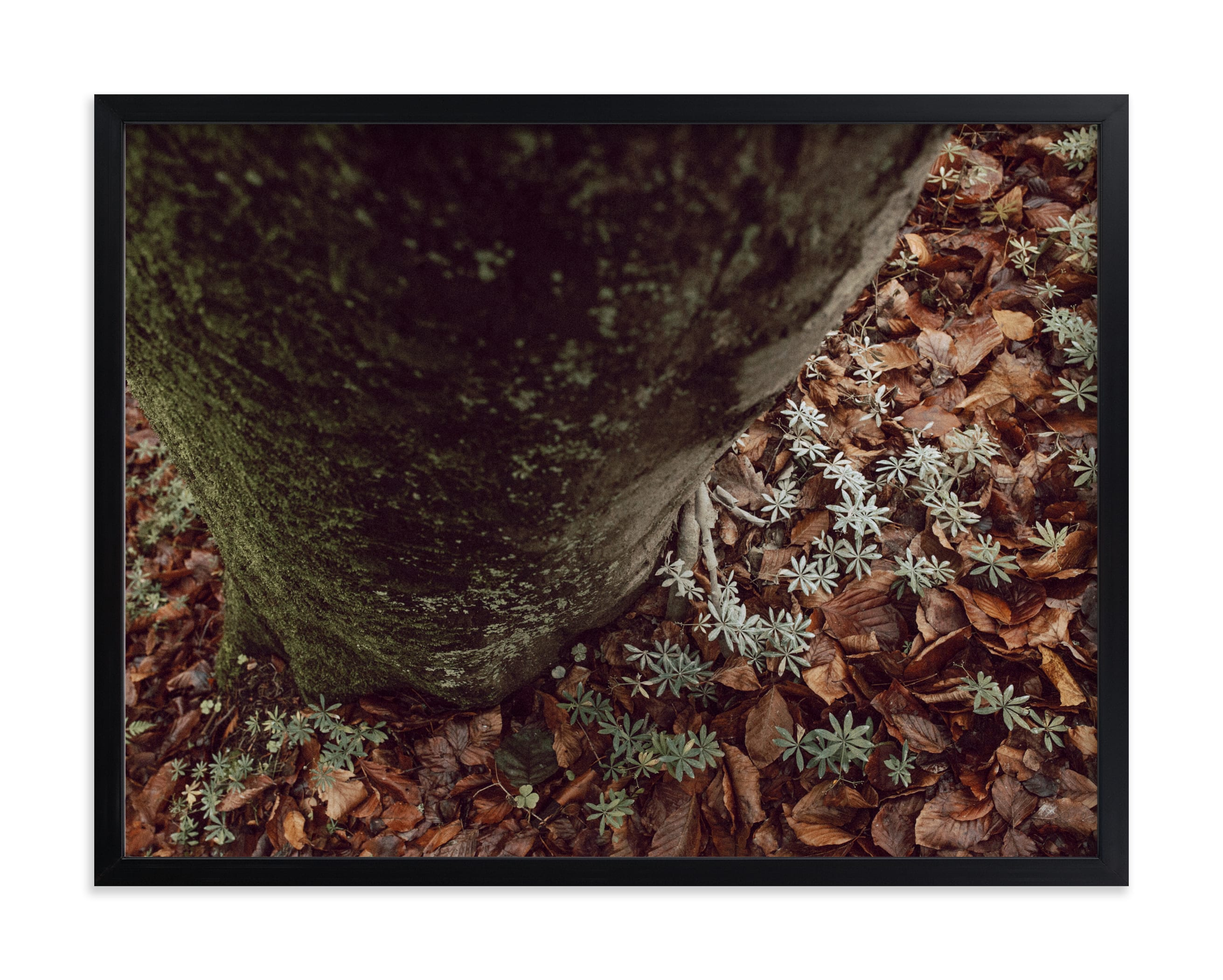"""""""Time for the fresh air II"""" by Lying on the grass in beautiful frame options and a variety of sizes."""