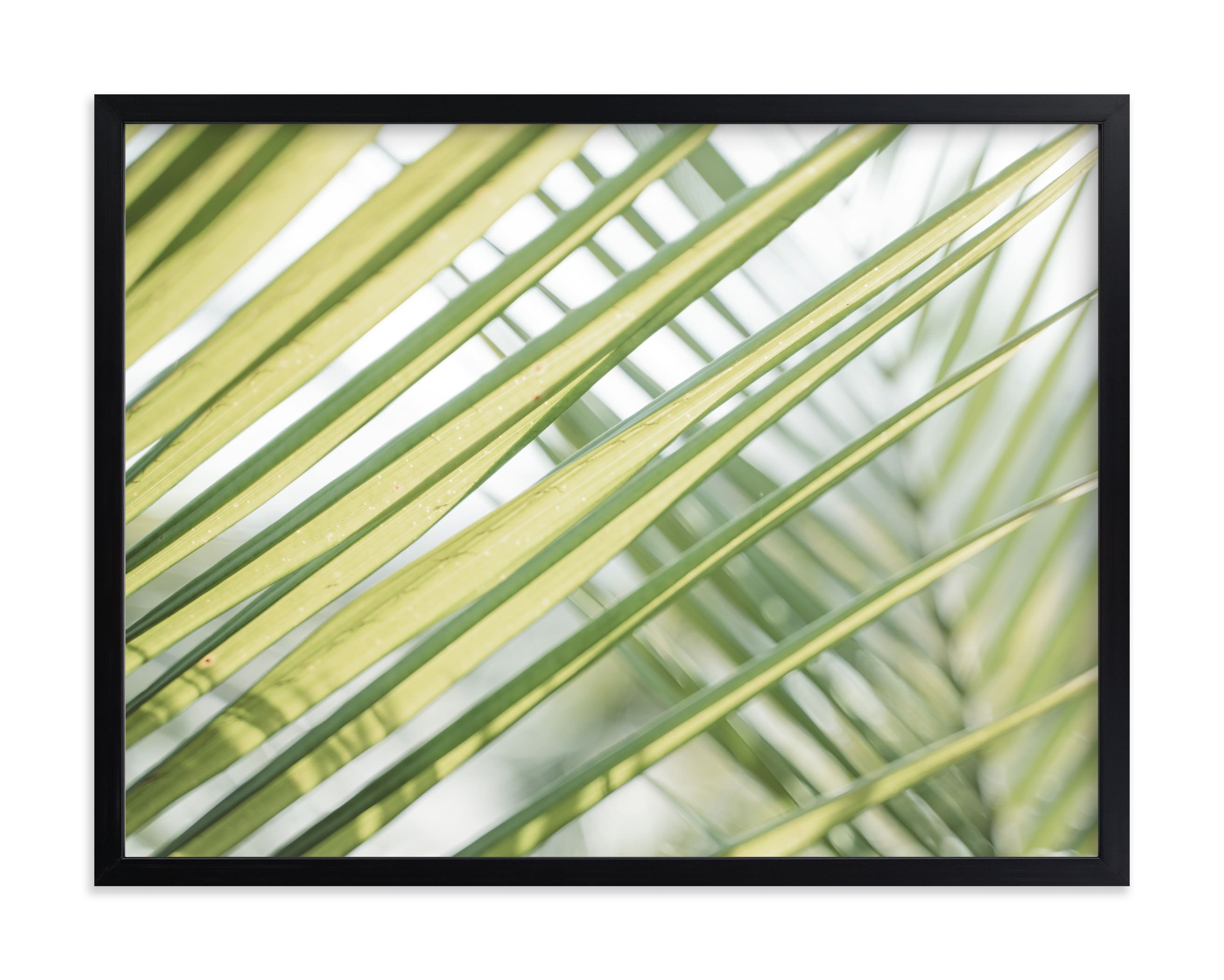 """""""Sunswept No. 2"""" by Owl and Toad in beautiful frame options and a variety of sizes."""