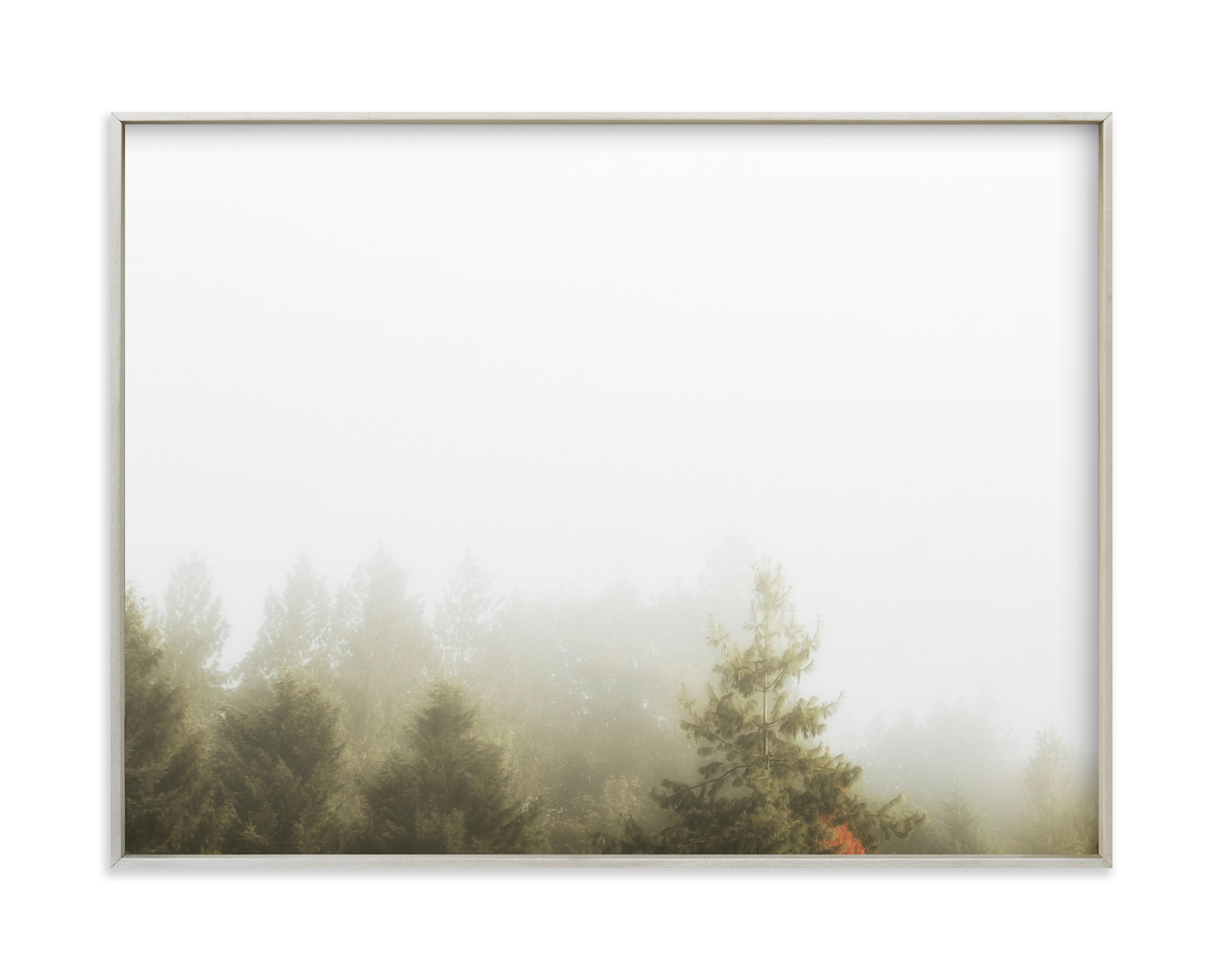Foggy Autumn Forest Morning Art Print