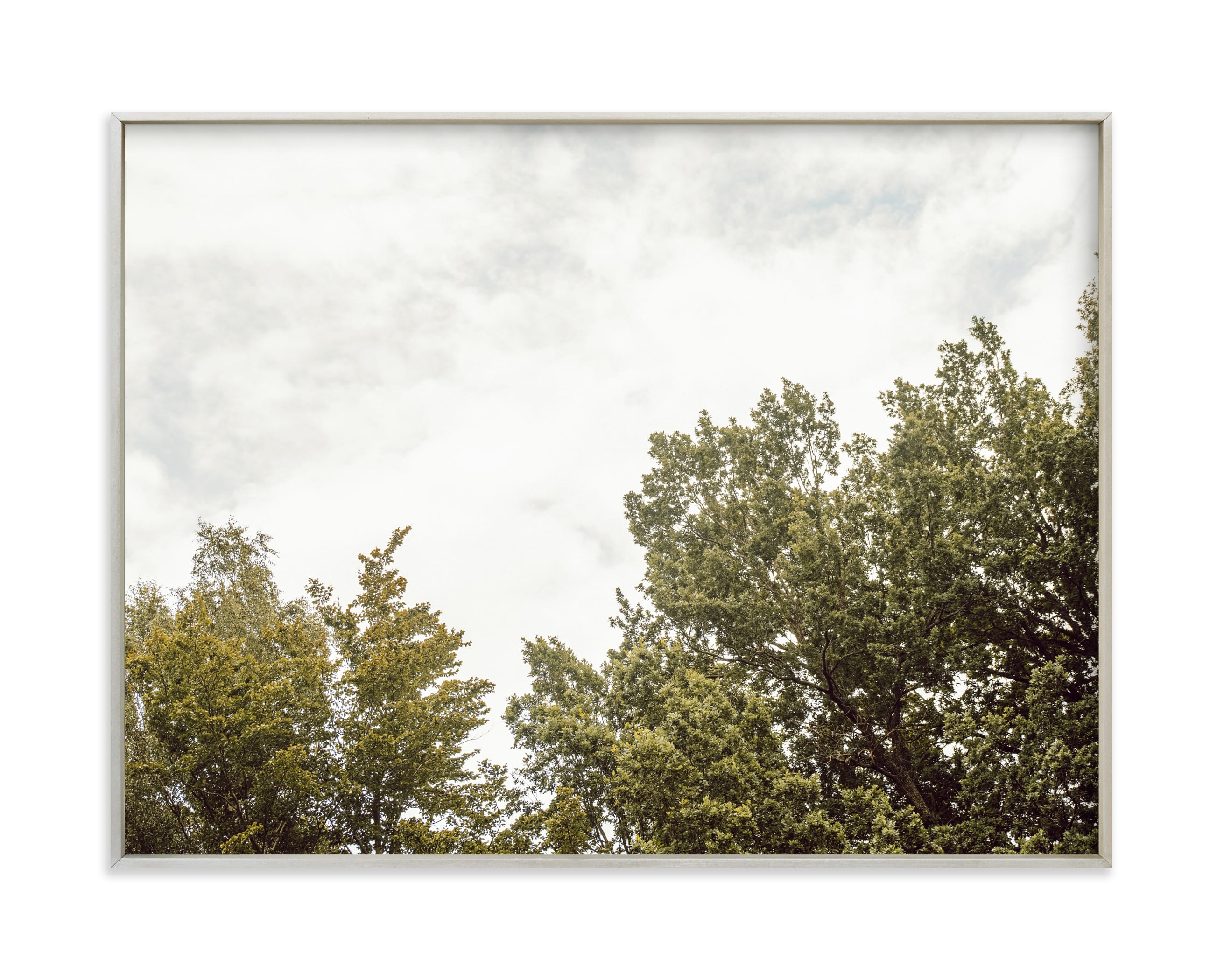 """""""Trees in the clouds"""" by Lying on the grass in beautiful frame options and a variety of sizes."""