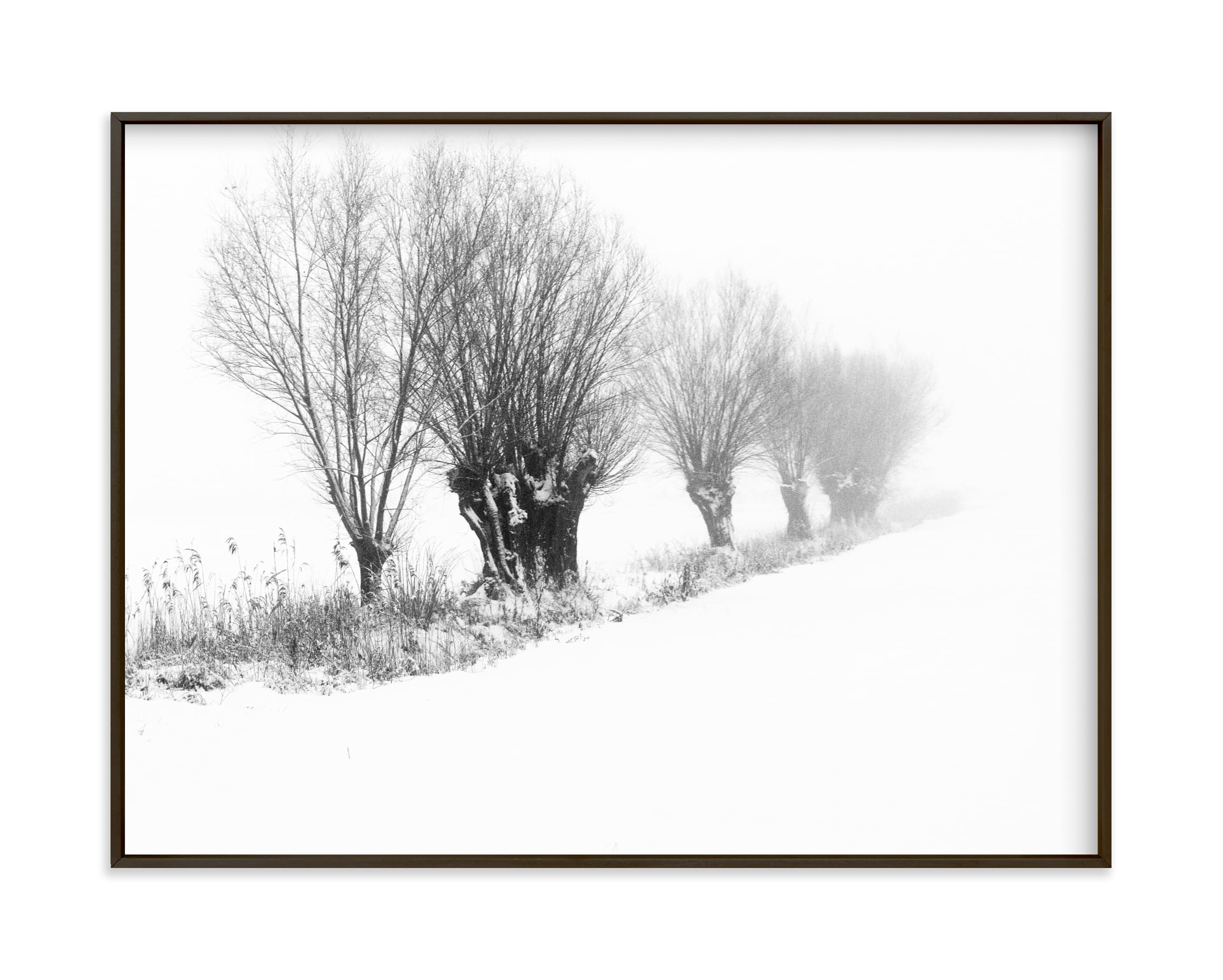 """""""Willows II"""" by Lying on the grass in beautiful frame options and a variety of sizes."""