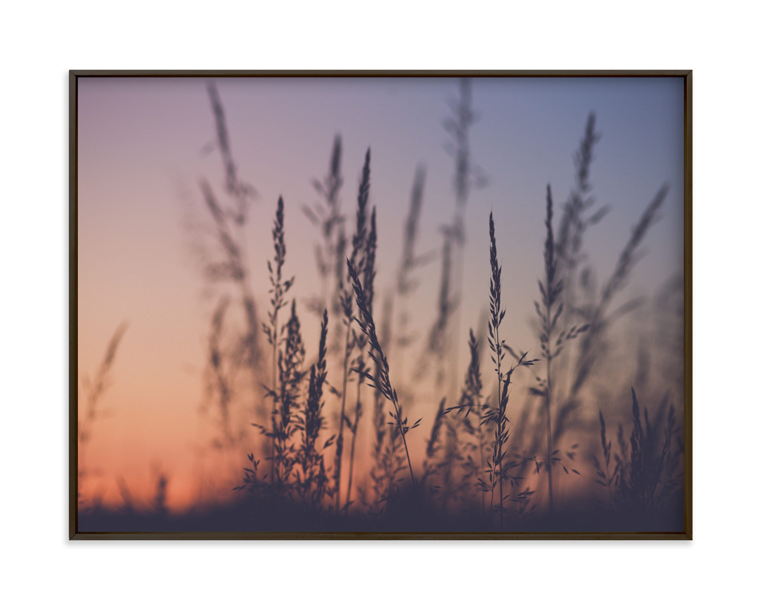"""""""Sunset among the grasses I"""" by Lying on the grass in beautiful frame options and a variety of sizes."""