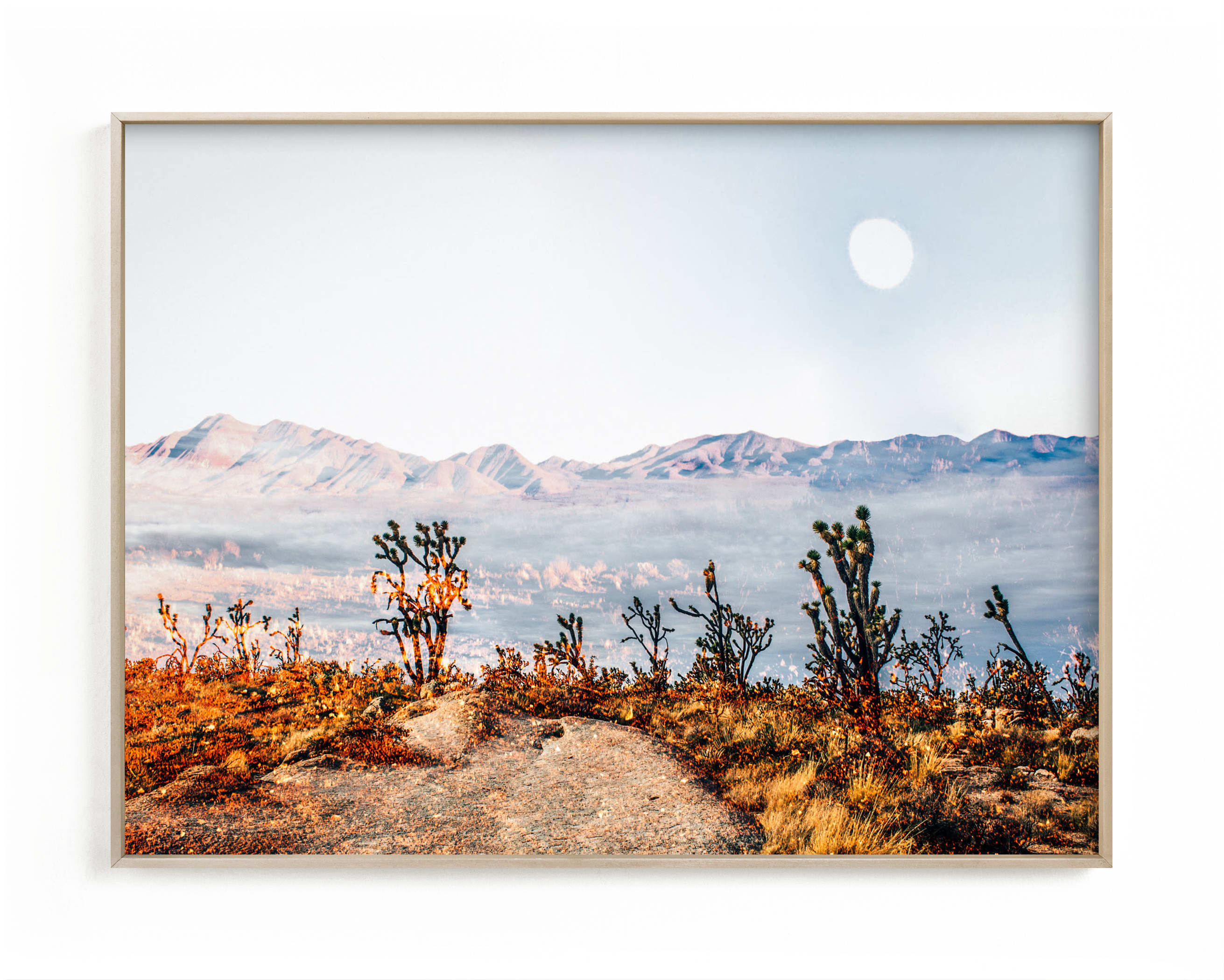 Desert Super Moon Art Print