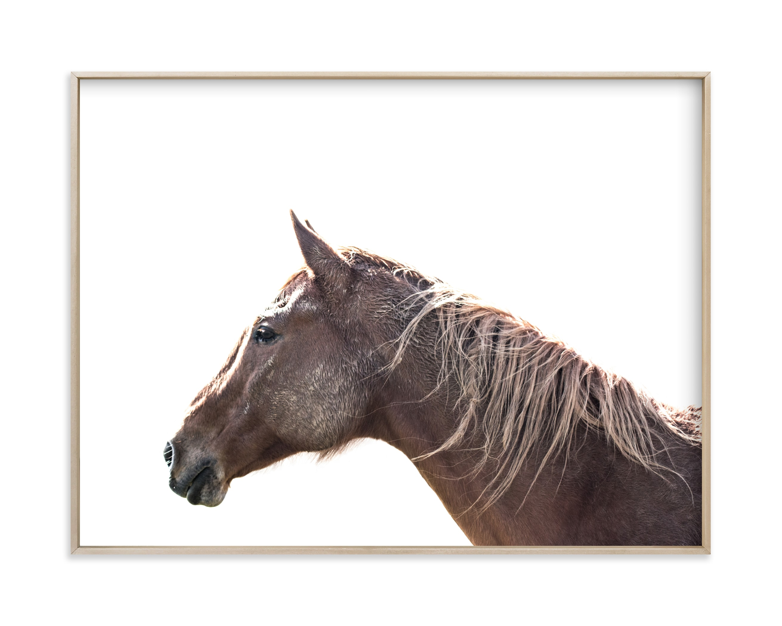"""""""A Little Muddy 2"""" by Owl and Toad in beautiful frame options and a variety of sizes."""