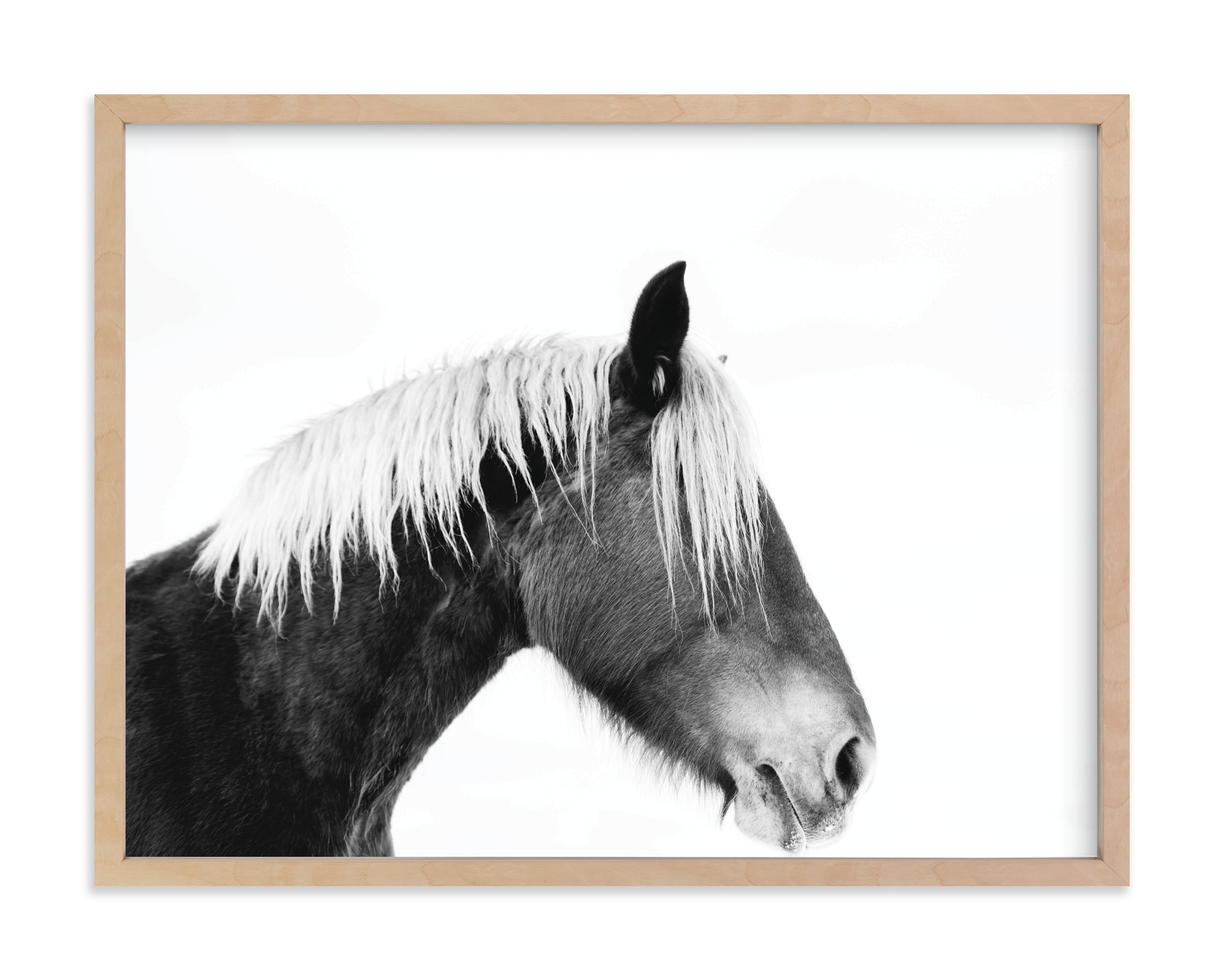 """Ansel"" - Limited Edition Art Print by Amy Carroll in beautiful frame options and a variety of sizes."