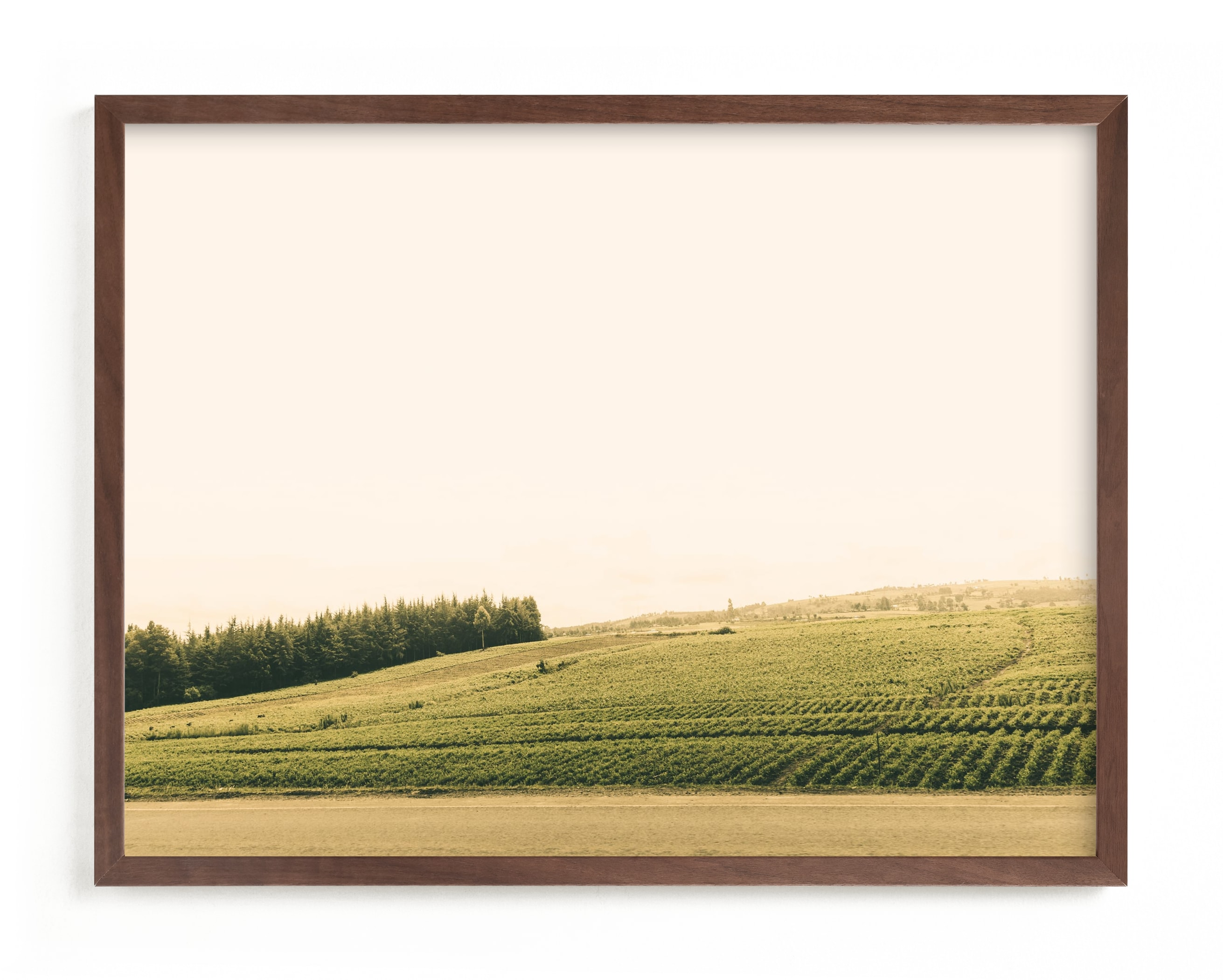 The Harvest Wall Art Print