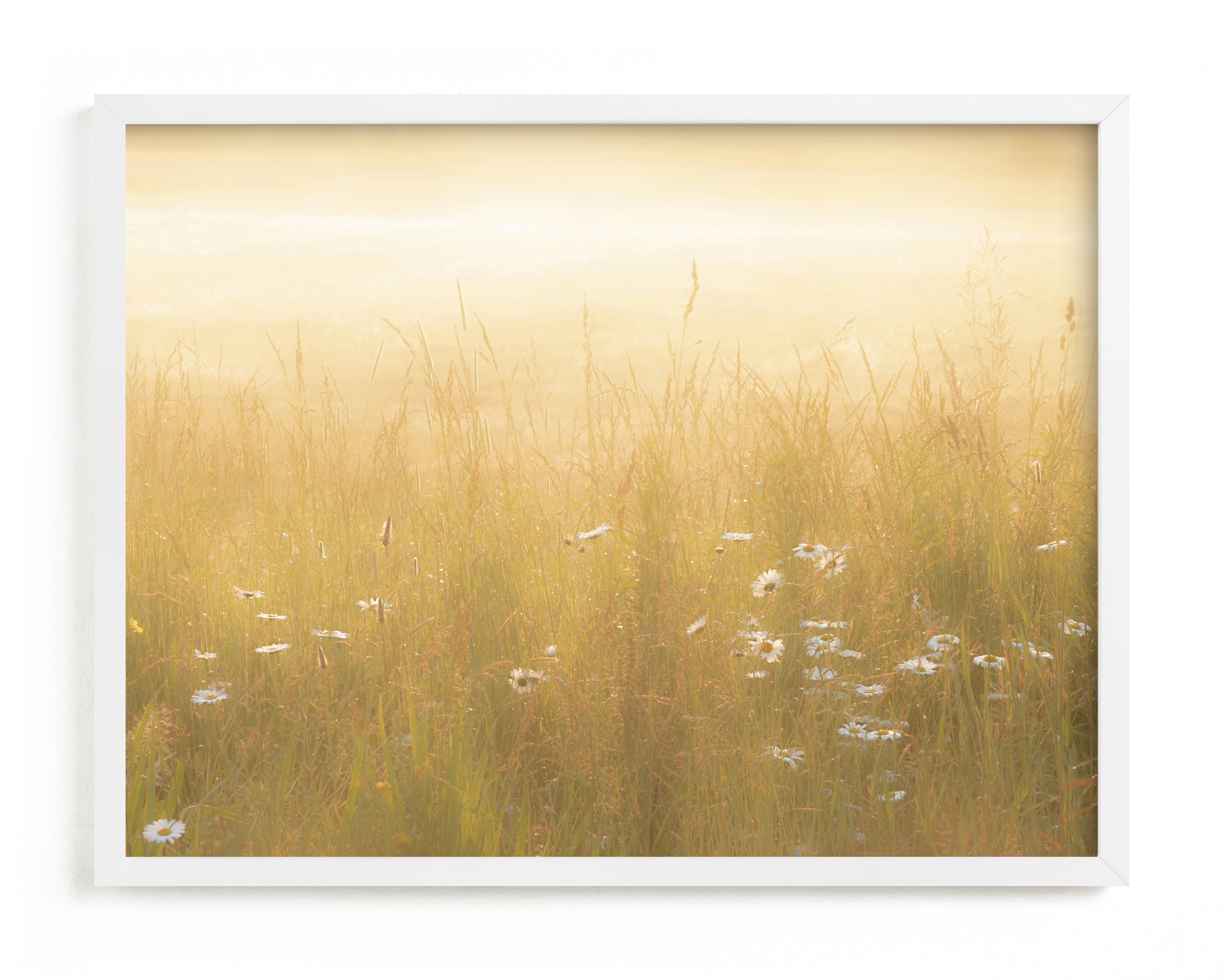 Golden Meadow Wall Art Print