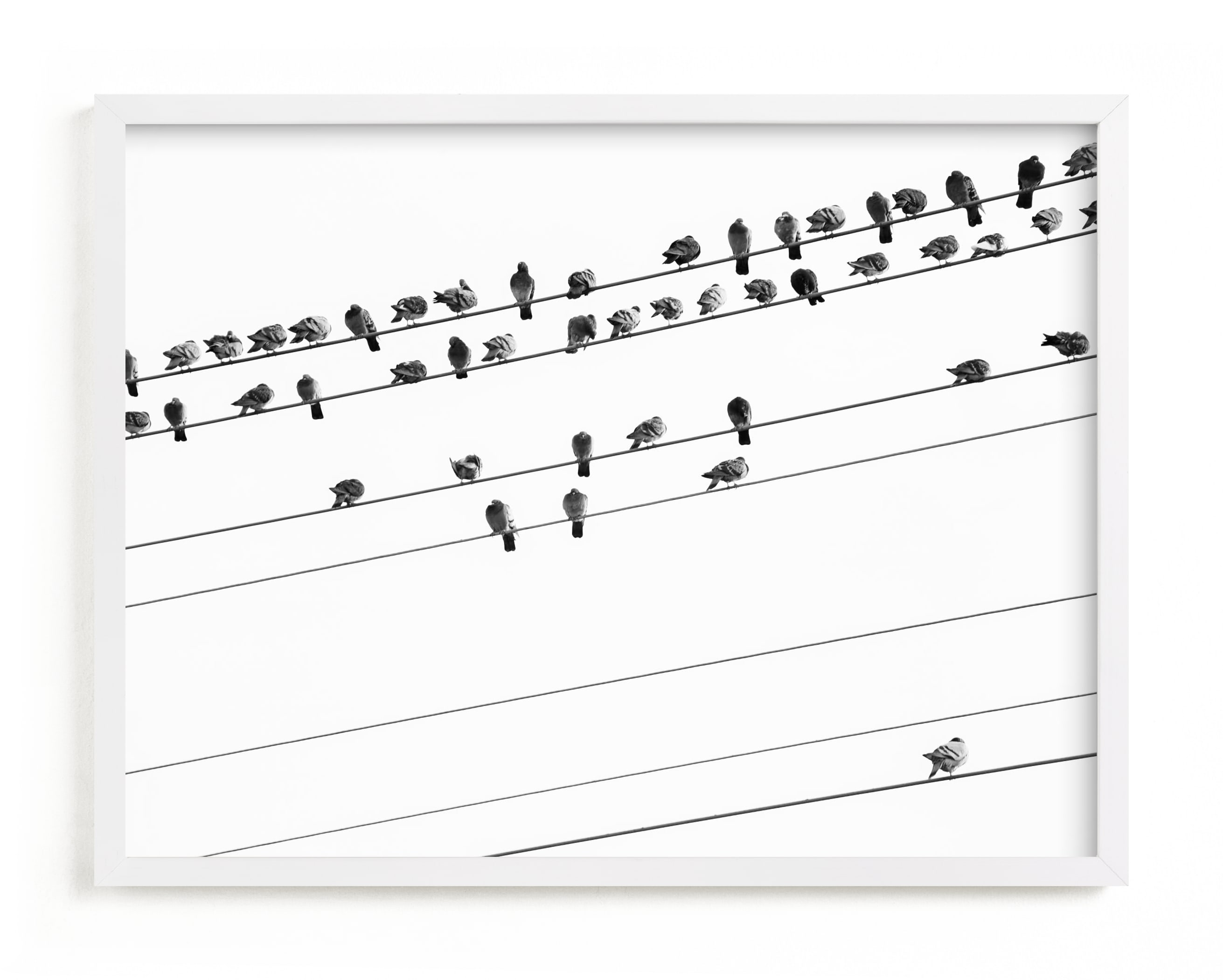 """""""birds in the meeting 1"""" - Limited Edition Art Print by Qing Ji in beautiful frame options and a variety of sizes."""