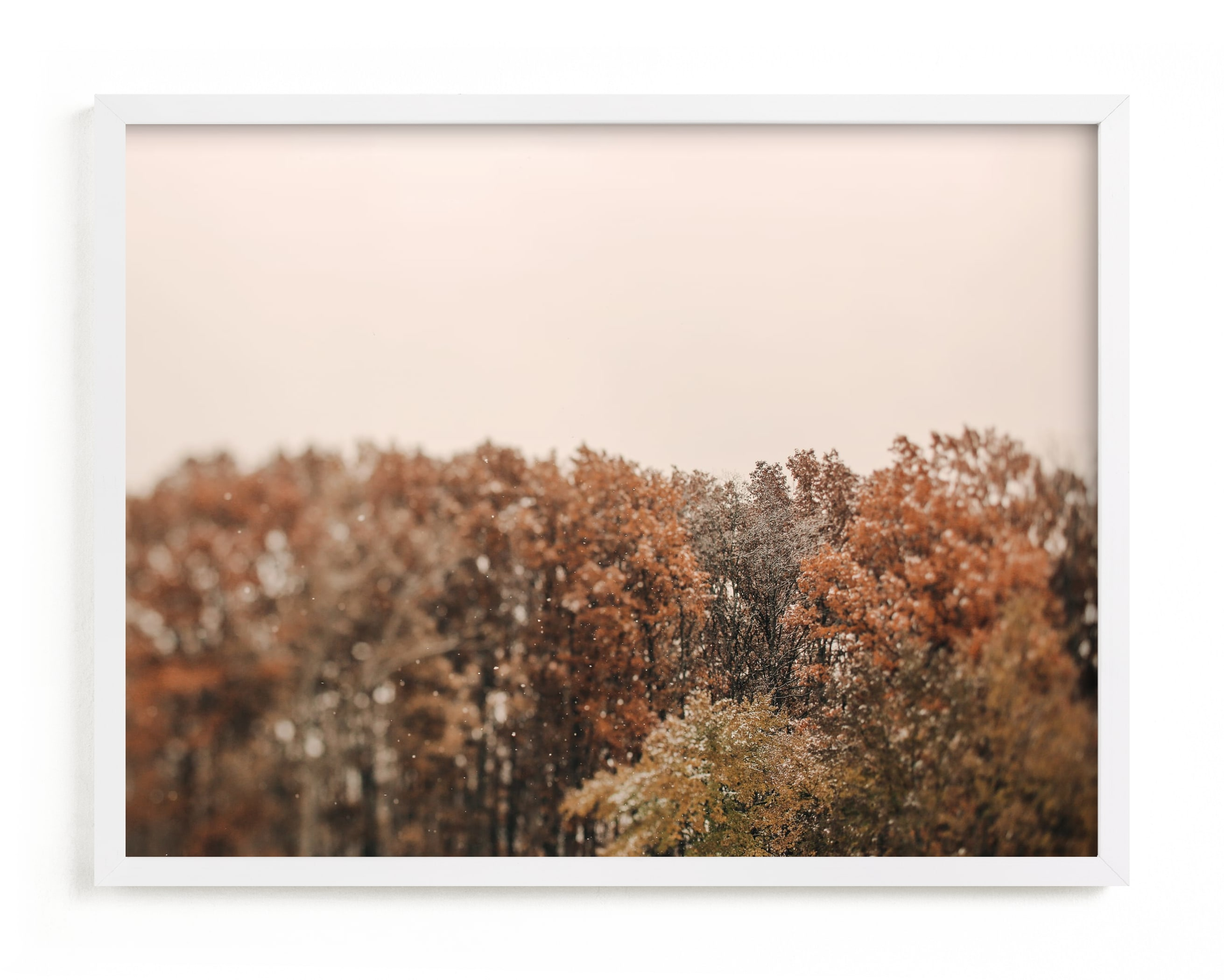 """Oak Leaves and Snowflakes"" - Limited Edition Art Print by ALICIA BOCK in beautiful frame options and a variety of sizes."