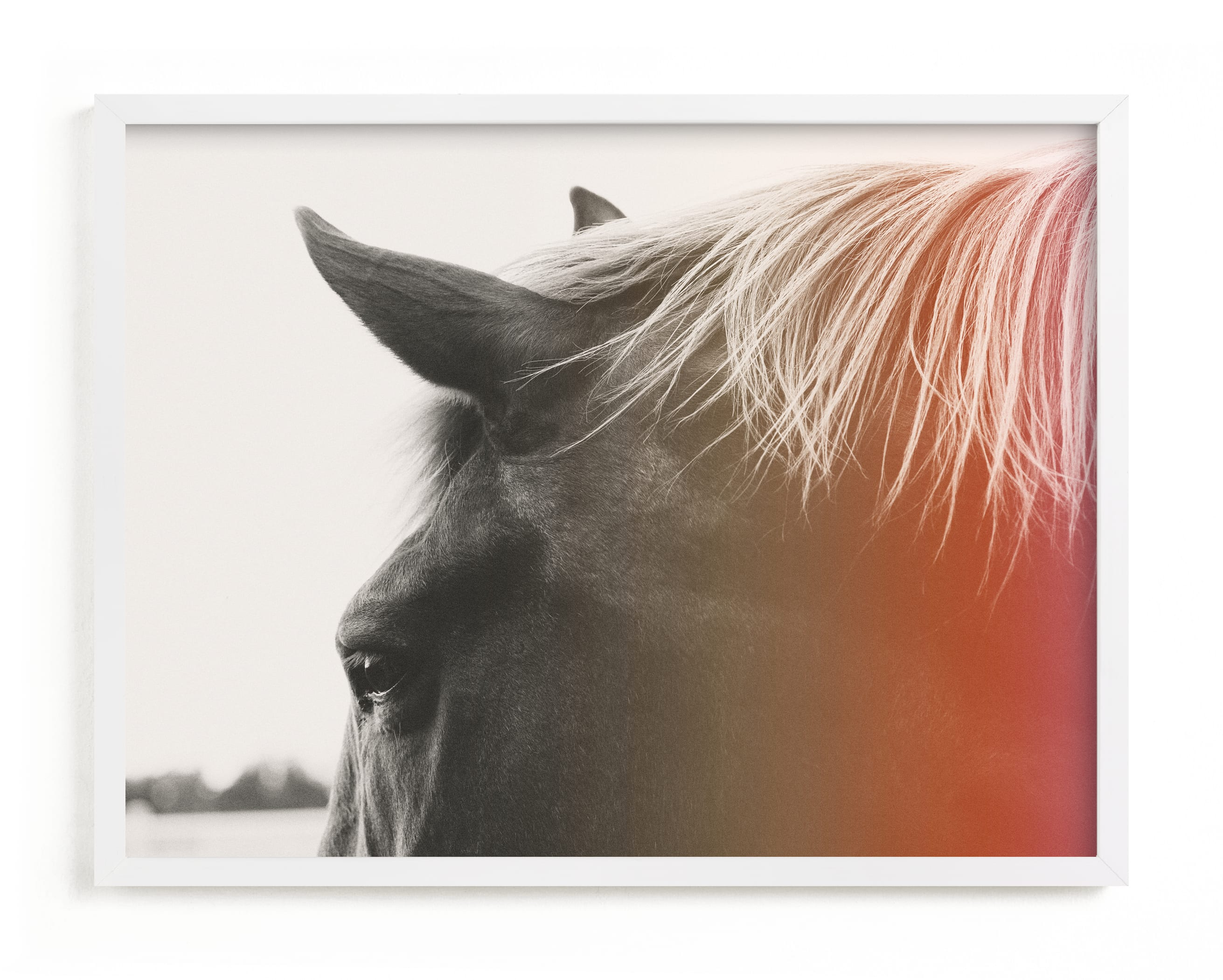 """""""Pink Pony"""" - Grownup Open Edition Non-custom Art Print by ALICIA BOCK in beautiful frame options and a variety of sizes."""