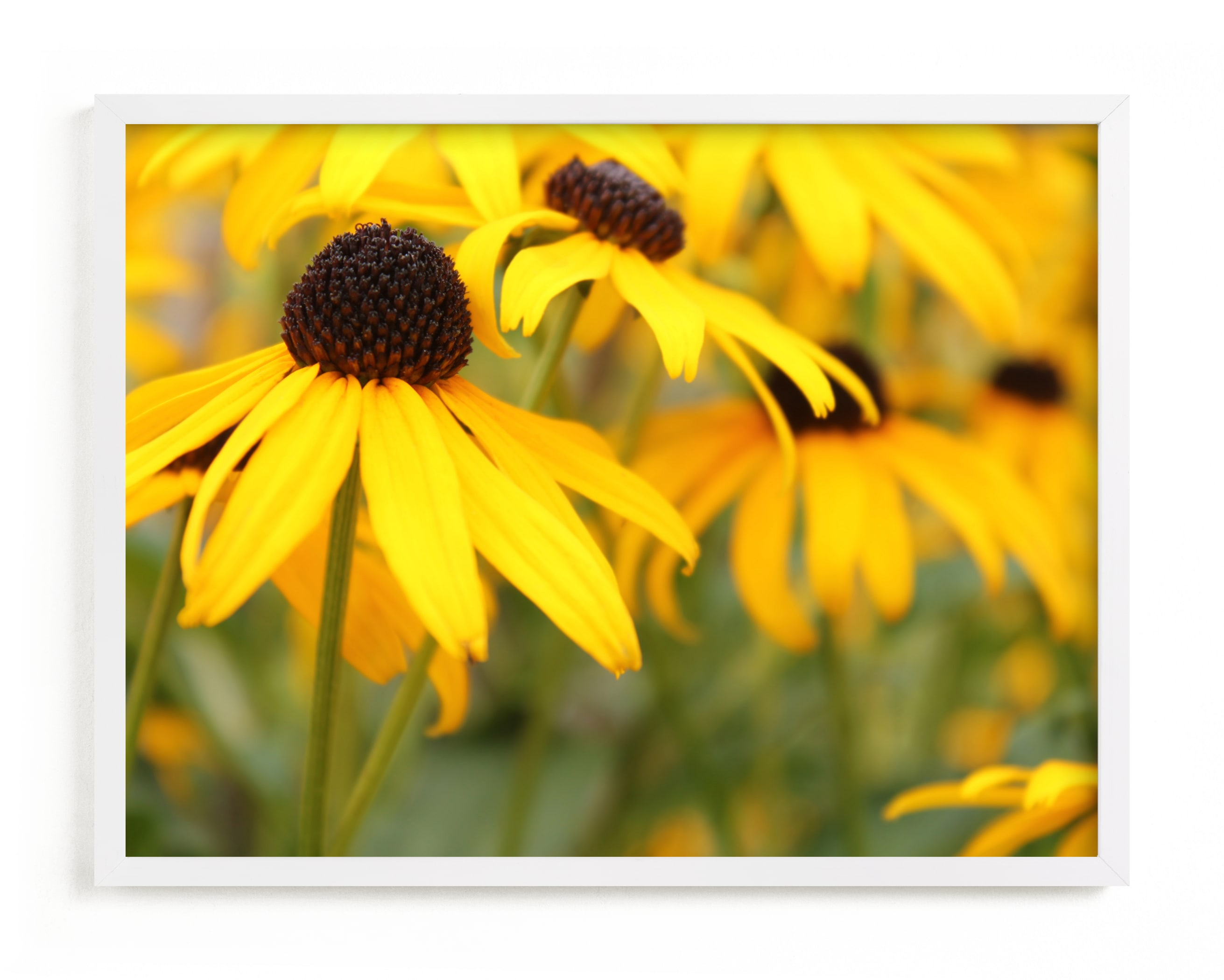 """""""Happy Sunflowers"""" by Karen Kaul in beautiful frame options and a variety of sizes."""