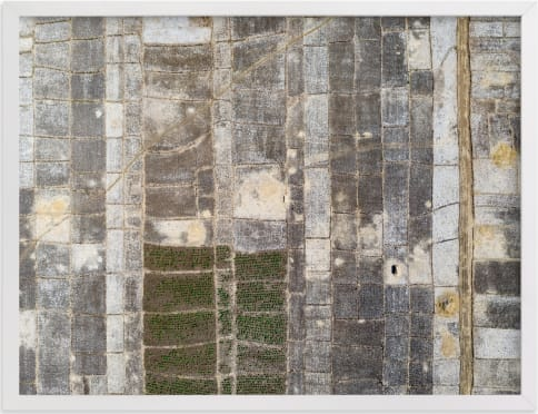 This is a brown art by Alaric Yanos called transition.